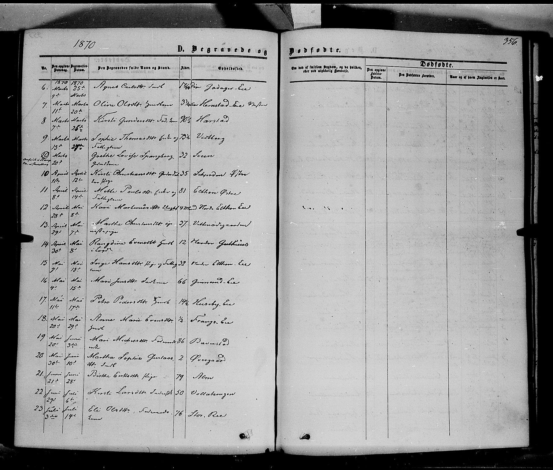 SAH, Stange prestekontor, K/L0013: Ministerialbok nr. 13, 1862-1879, s. 356