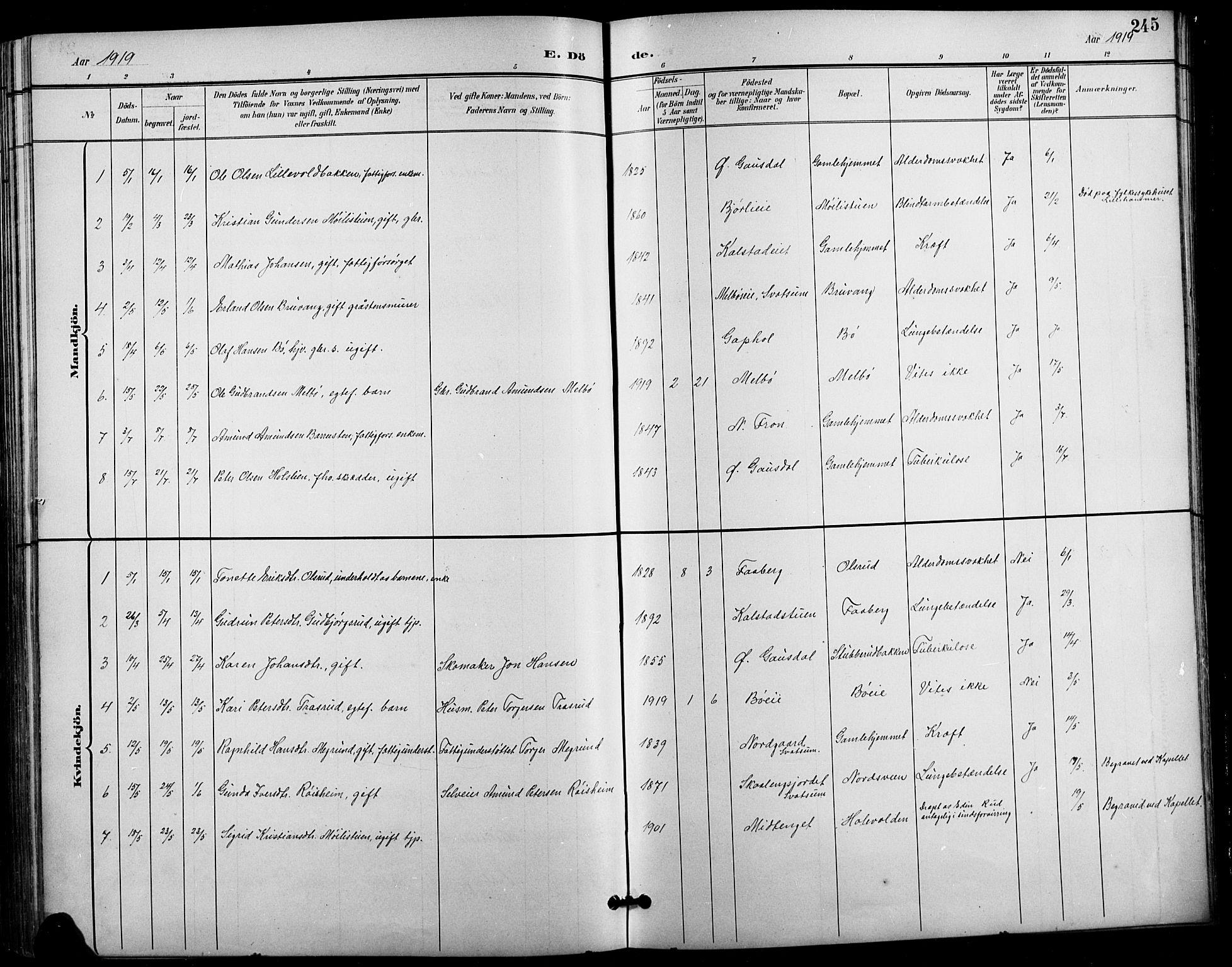 SAH, Vestre Gausdal prestekontor, Klokkerbok nr. 3, 1896-1925, s. 245