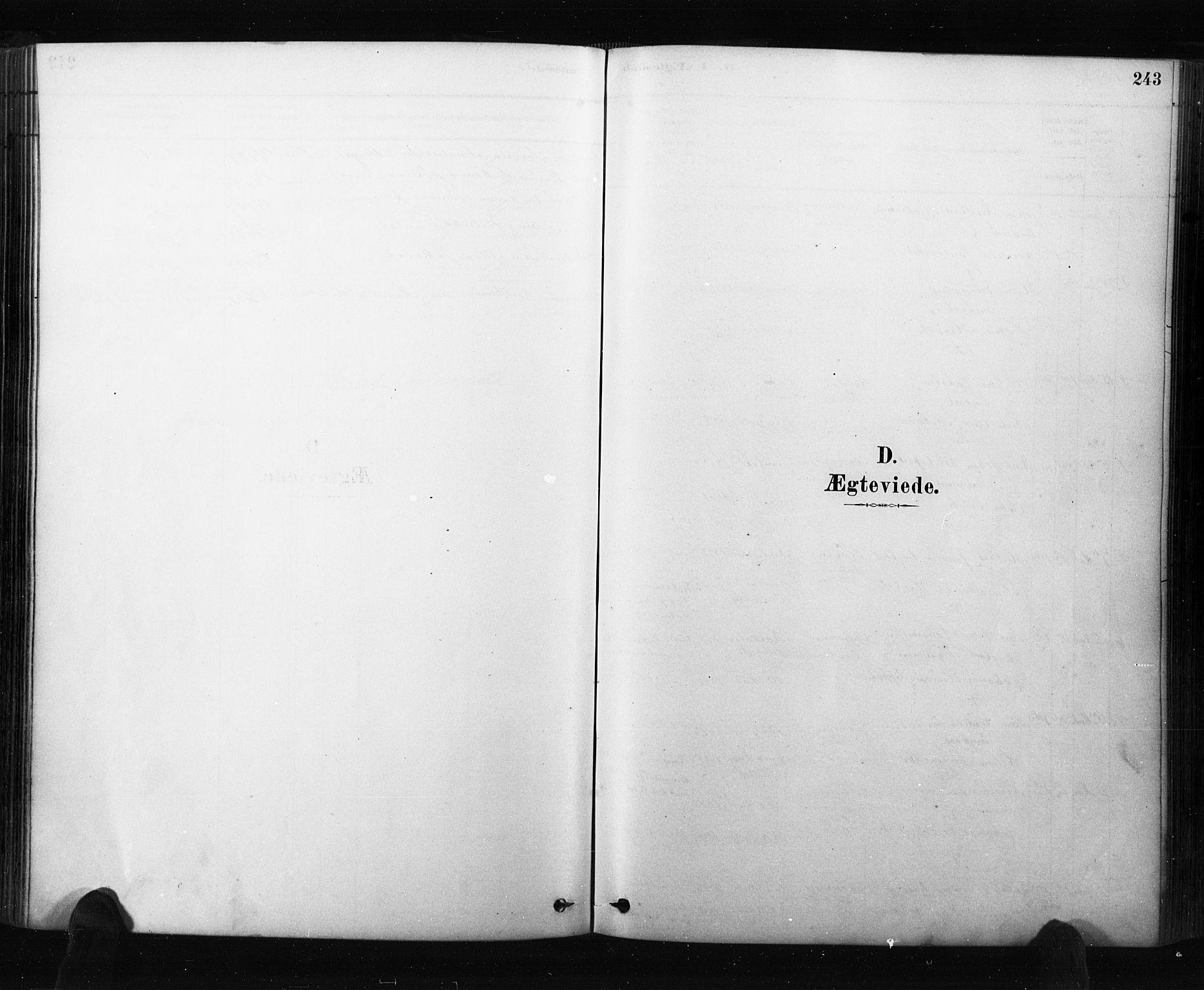 SAO, Råde prestekontor kirkebøker, F/Fa/L0007: Ministerialbok nr. 7, 1878-1902, s. 243