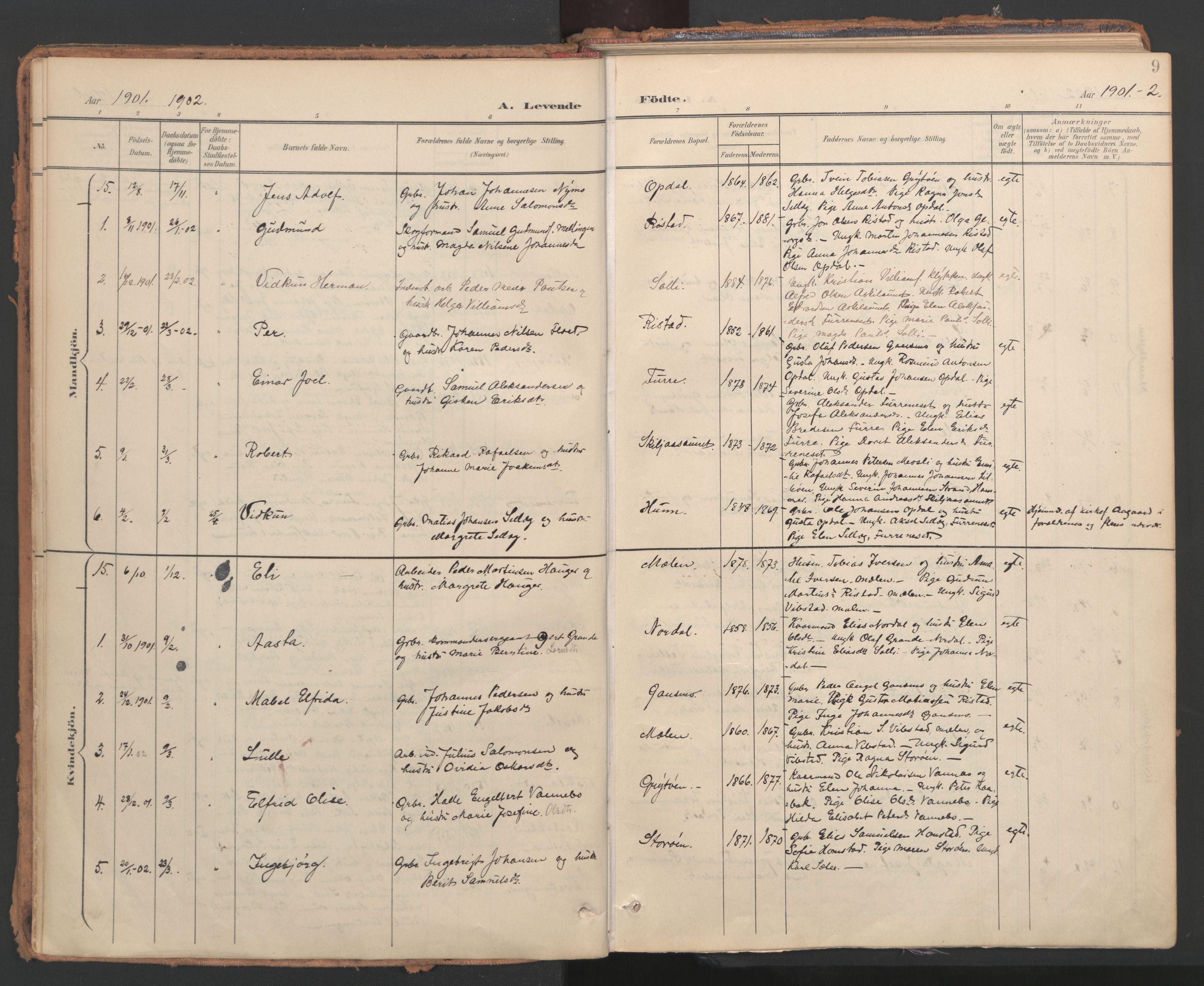SAT, Ministerialprotokoller, klokkerbøker og fødselsregistre - Nord-Trøndelag, 766/L0564: Ministerialbok nr. 767A02, 1900-1932, s. 9