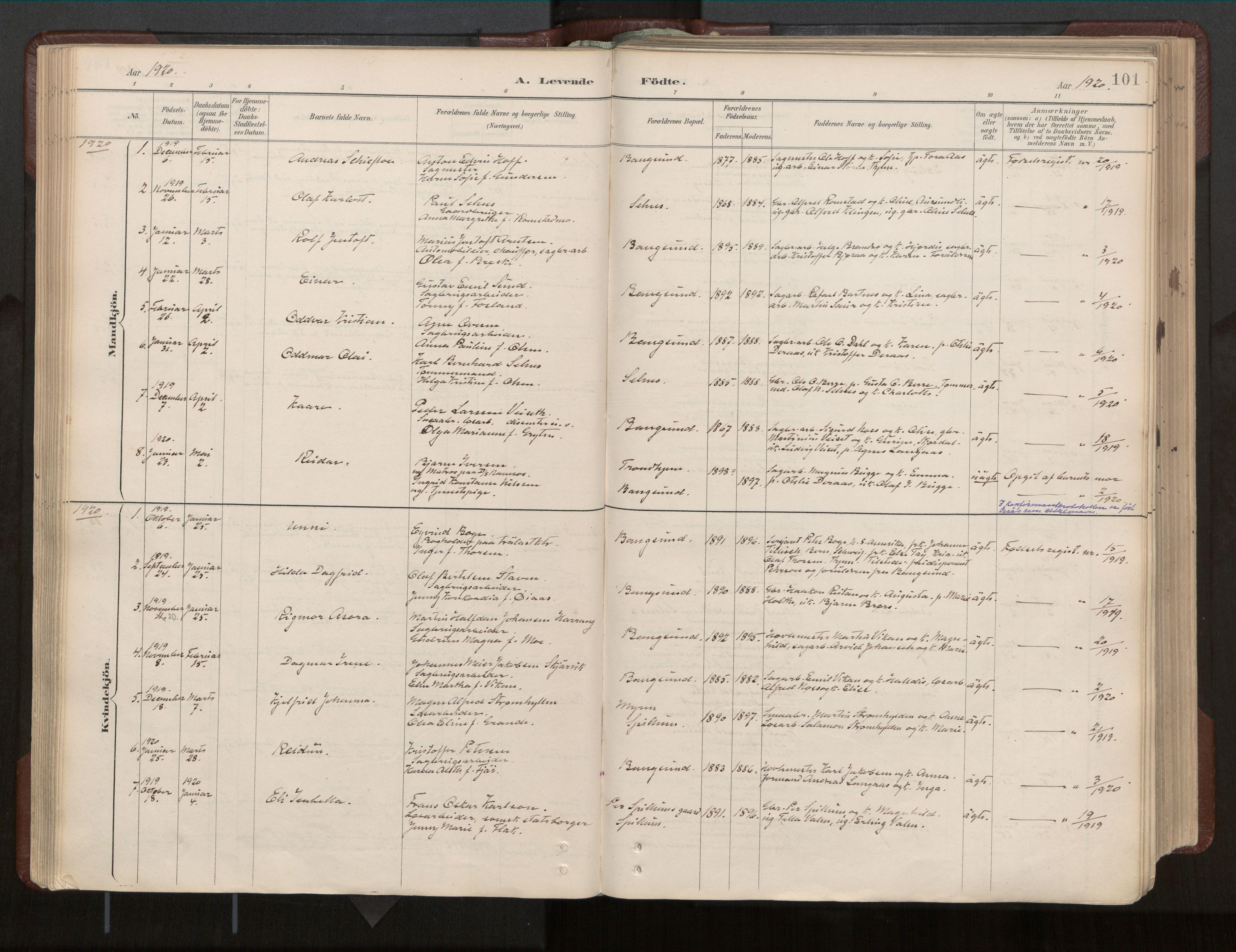 SAT, Ministerialprotokoller, klokkerbøker og fødselsregistre - Nord-Trøndelag, 770/L0589: Ministerialbok nr. 770A03, 1887-1929, s. 101