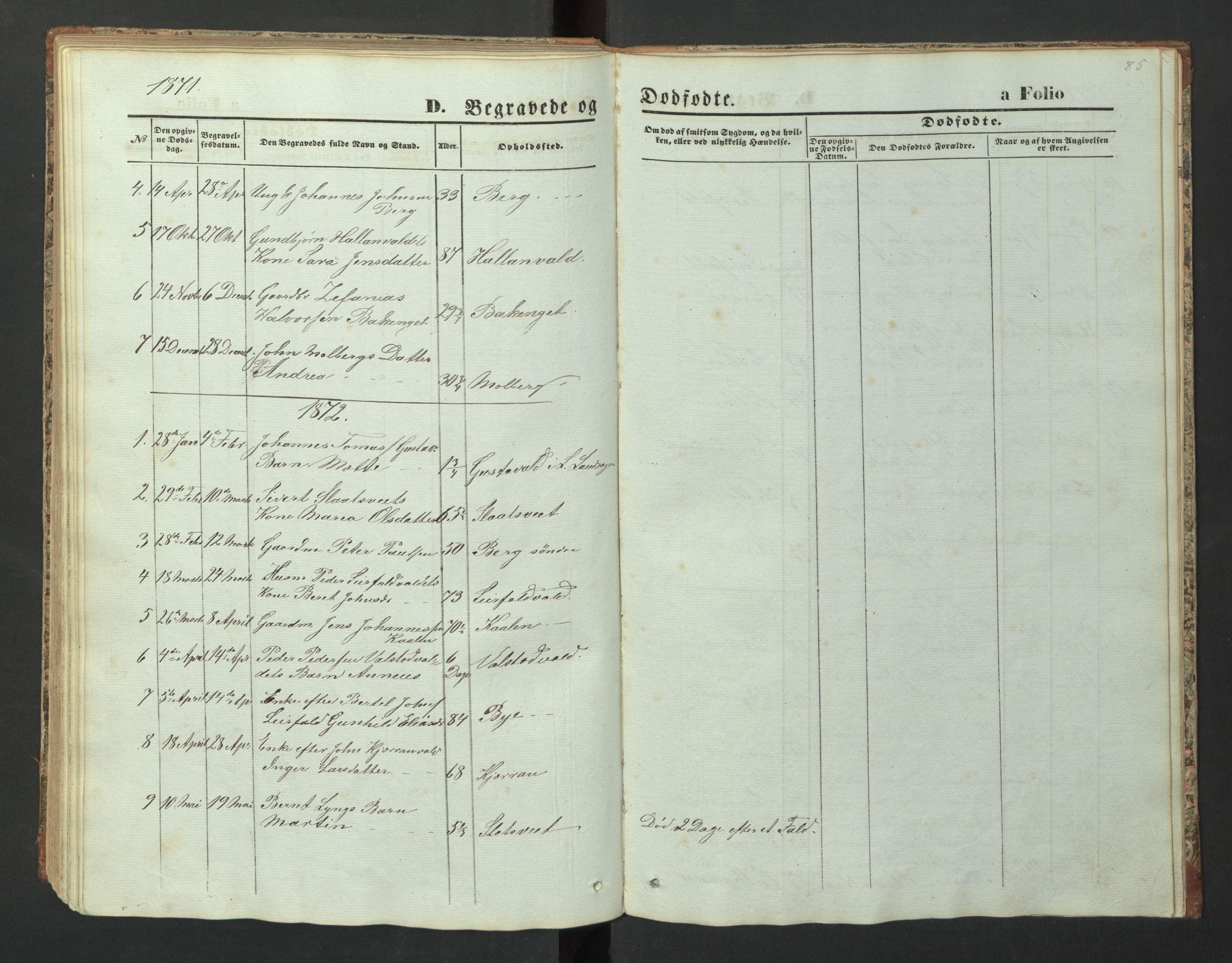 SAT, Ministerialprotokoller, klokkerbøker og fødselsregistre - Nord-Trøndelag, 726/L0271: Klokkerbok nr. 726C02, 1869-1897, s. 85