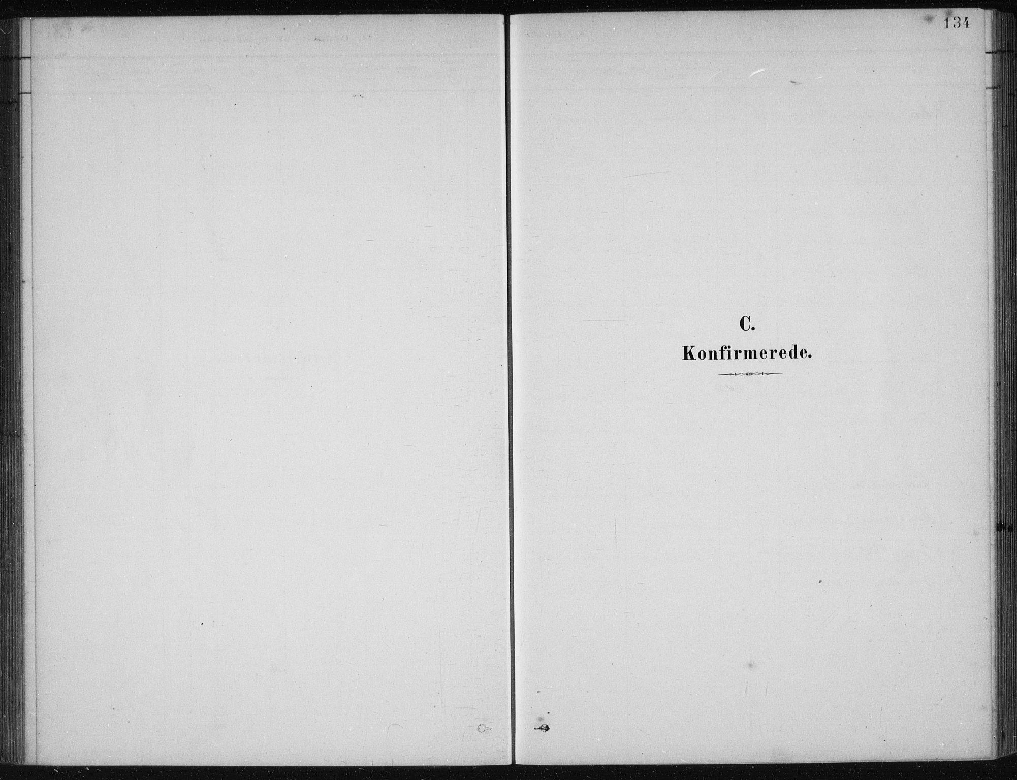 SAB, Etne sokneprestembete, H/Haa: Ministerialbok nr. D  1, 1879-1919, s. 134