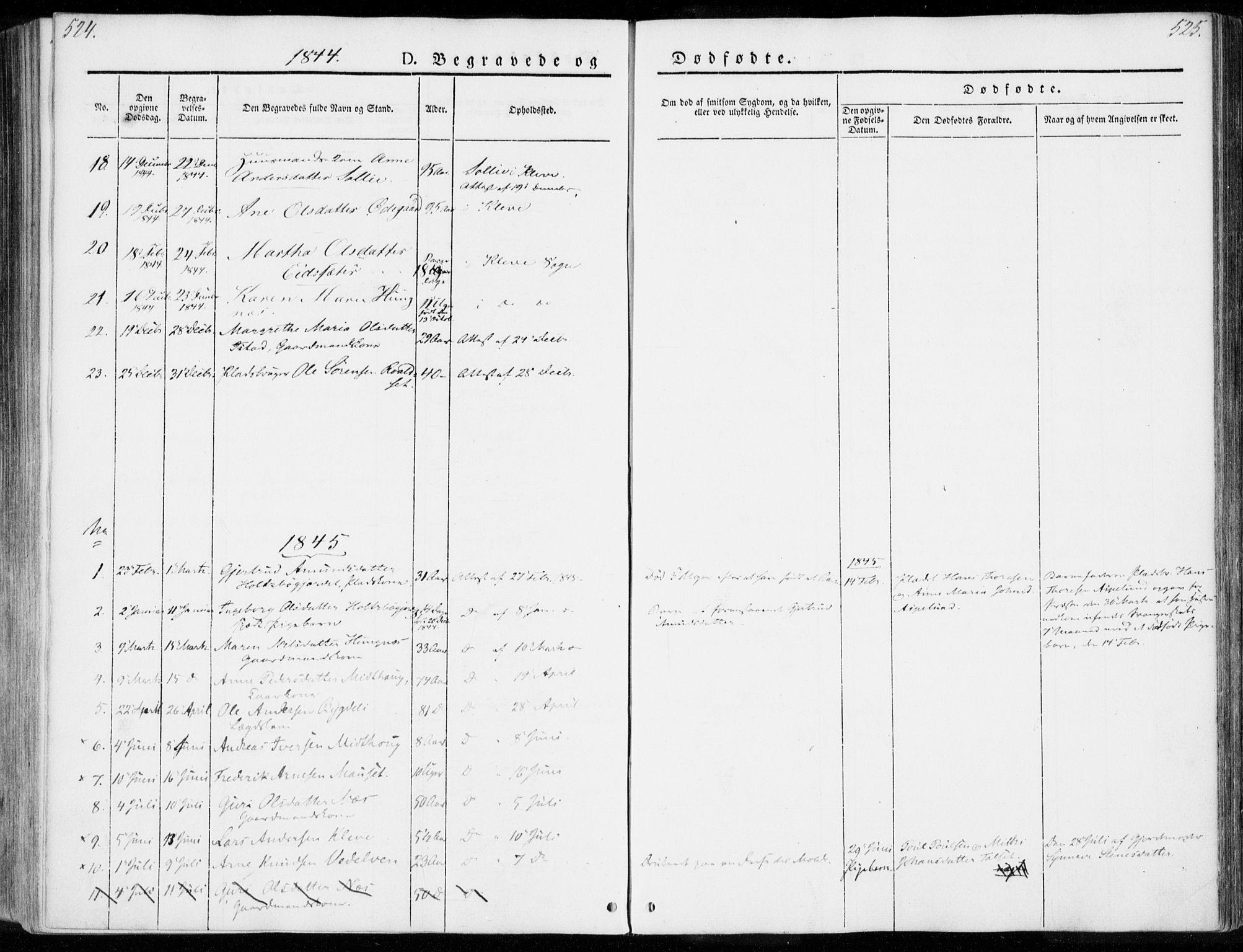 SAT, Ministerialprotokoller, klokkerbøker og fødselsregistre - Møre og Romsdal, 557/L0680: Ministerialbok nr. 557A02, 1843-1869, s. 524-525