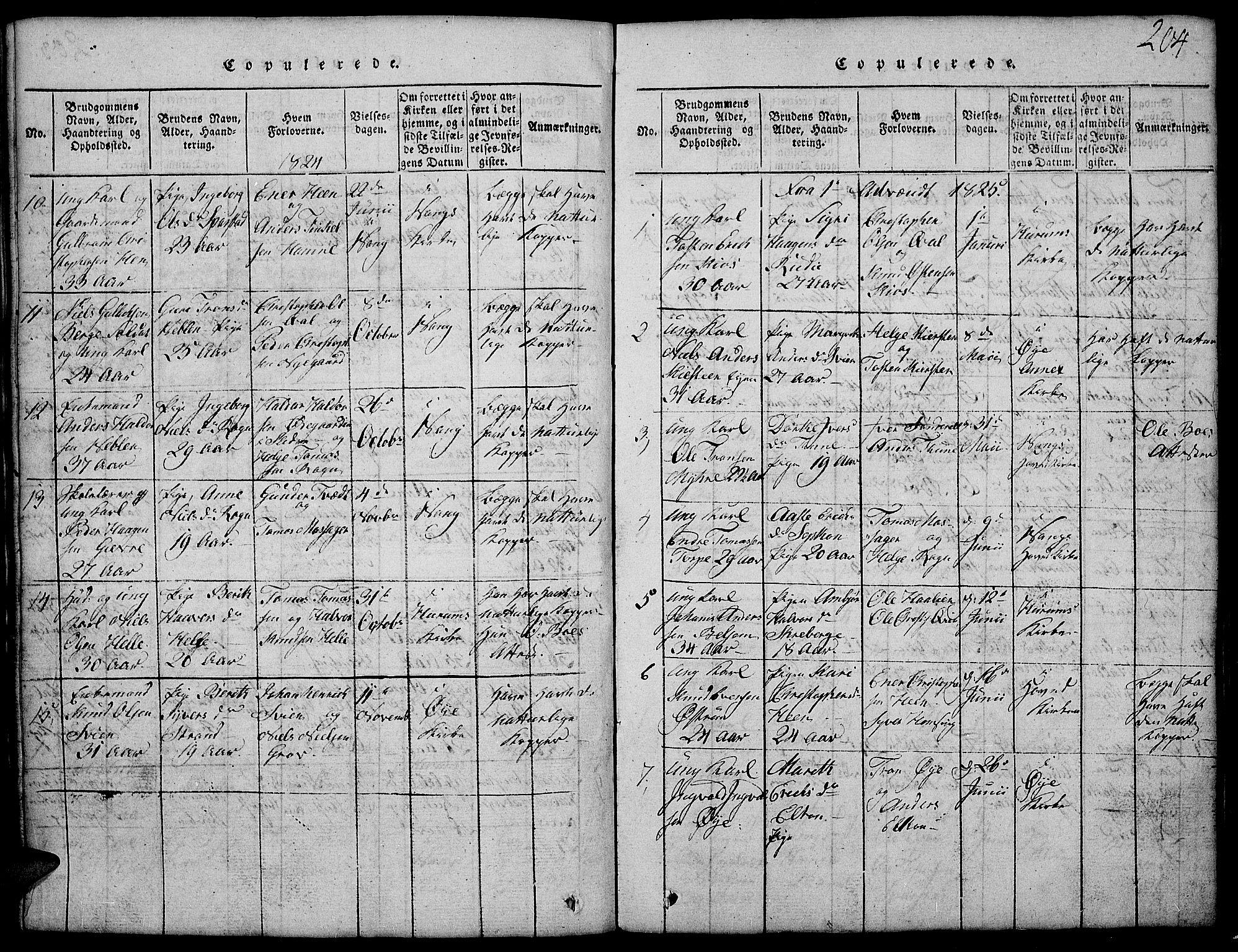SAH, Vang prestekontor, Valdres, Klokkerbok nr. 2, 1814-1889, s. 204