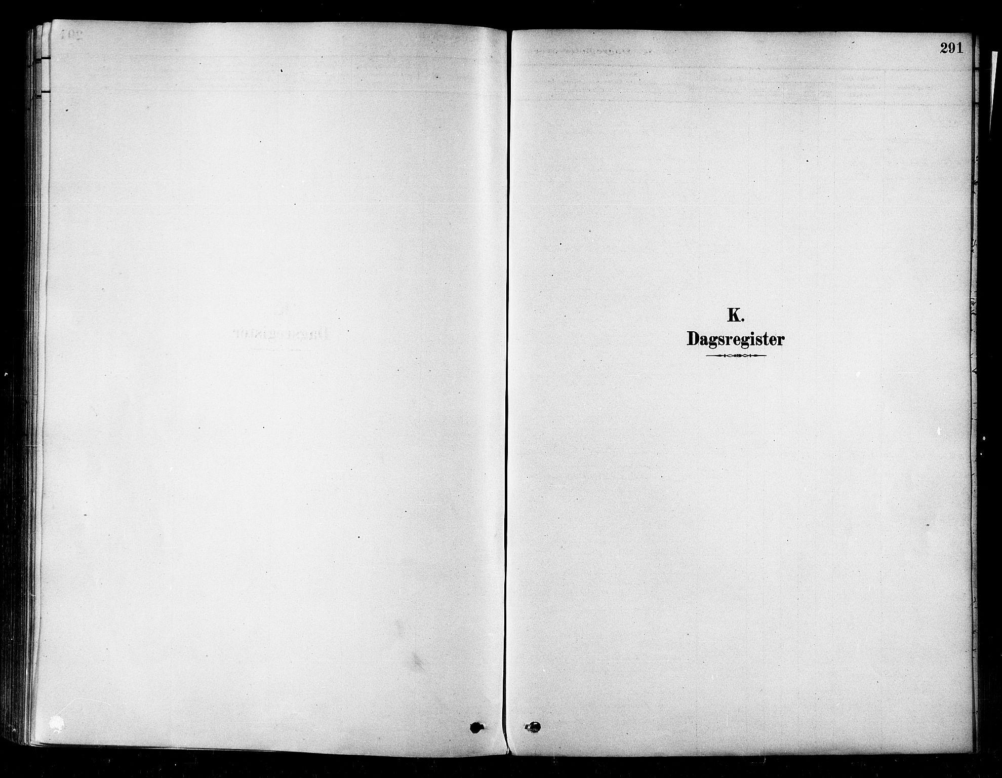 SATØ, Alta sokneprestembete, Ministerialbok nr. 2, 1879-1892, s. 291