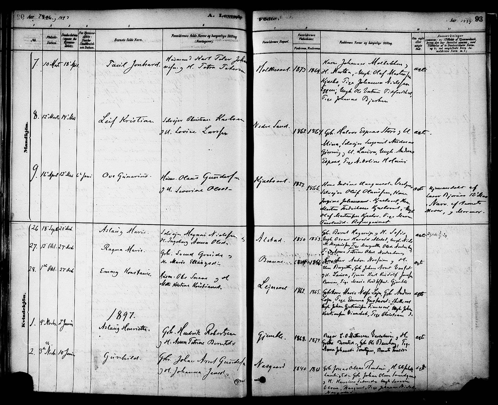 SAT, Ministerialprotokoller, klokkerbøker og fødselsregistre - Nord-Trøndelag, 717/L0159: Ministerialbok nr. 717A09, 1878-1898, s. 93