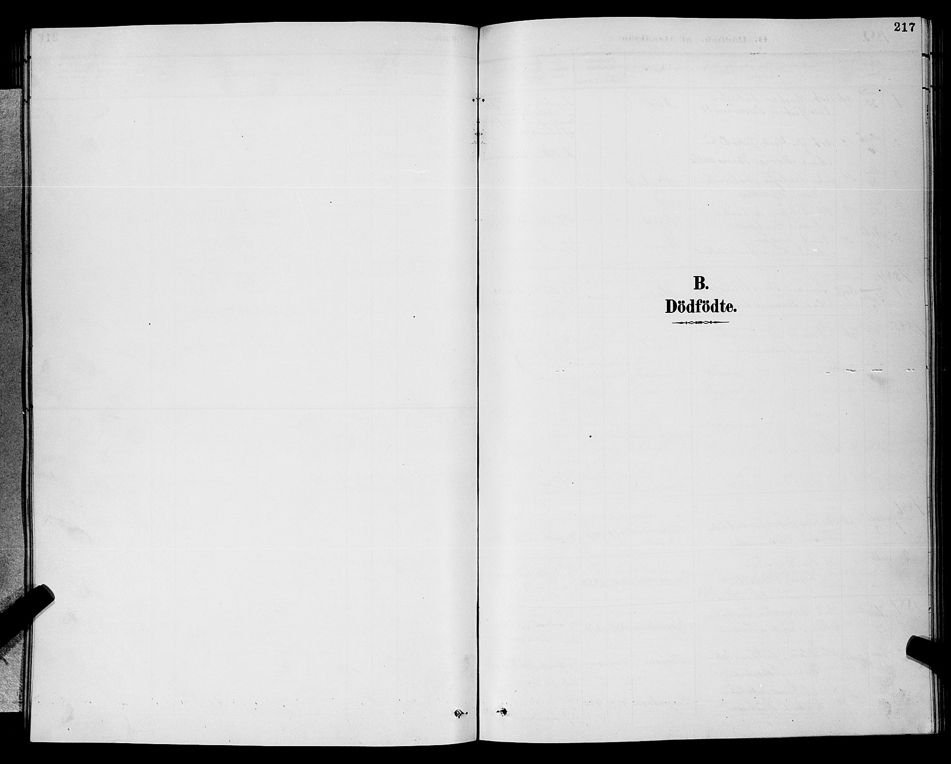 SAKO, Gjerpen kirkebøker, G/Ga/L0002: Klokkerbok nr. I 2, 1883-1900, s. 217