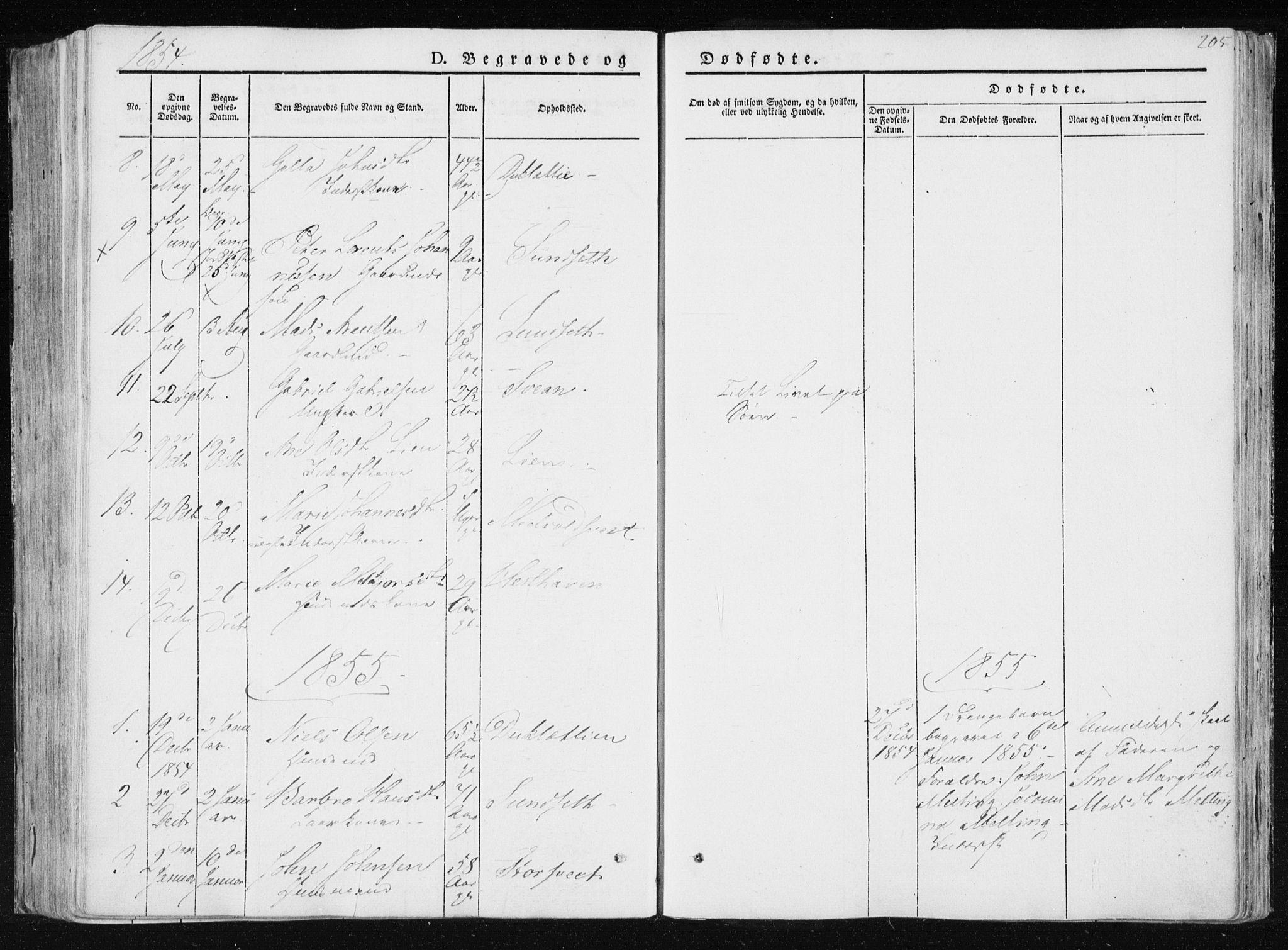 SAT, Ministerialprotokoller, klokkerbøker og fødselsregistre - Nord-Trøndelag, 733/L0323: Ministerialbok nr. 733A02, 1843-1870, s. 205
