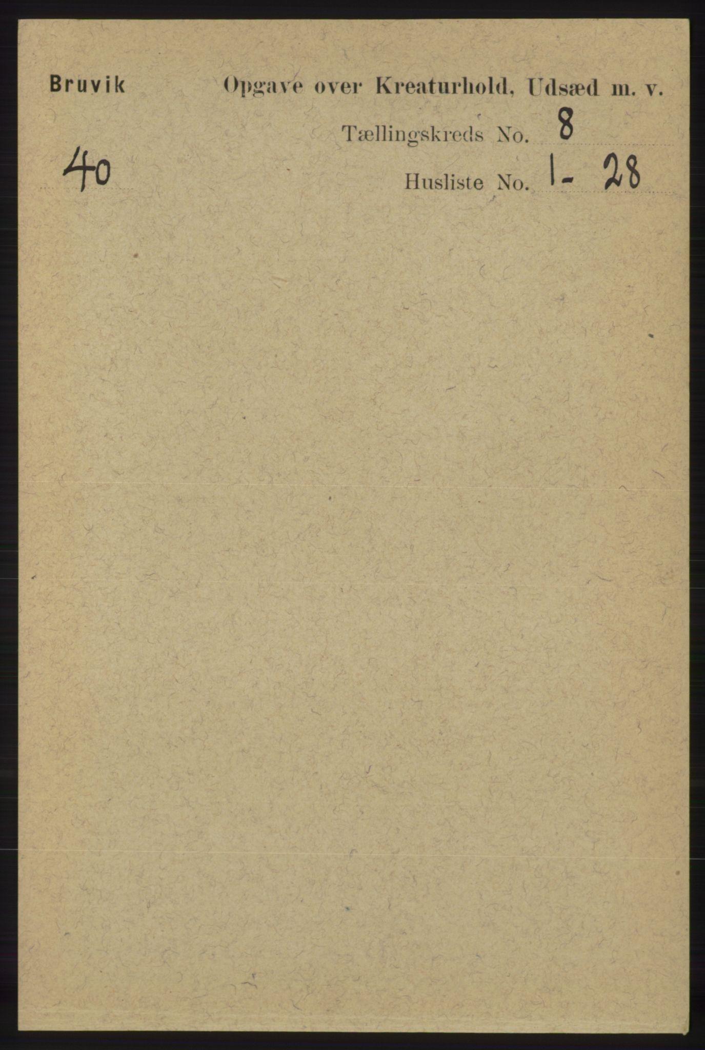 RA, Folketelling 1891 for 1251 Bruvik herred, 1891, s. 4729