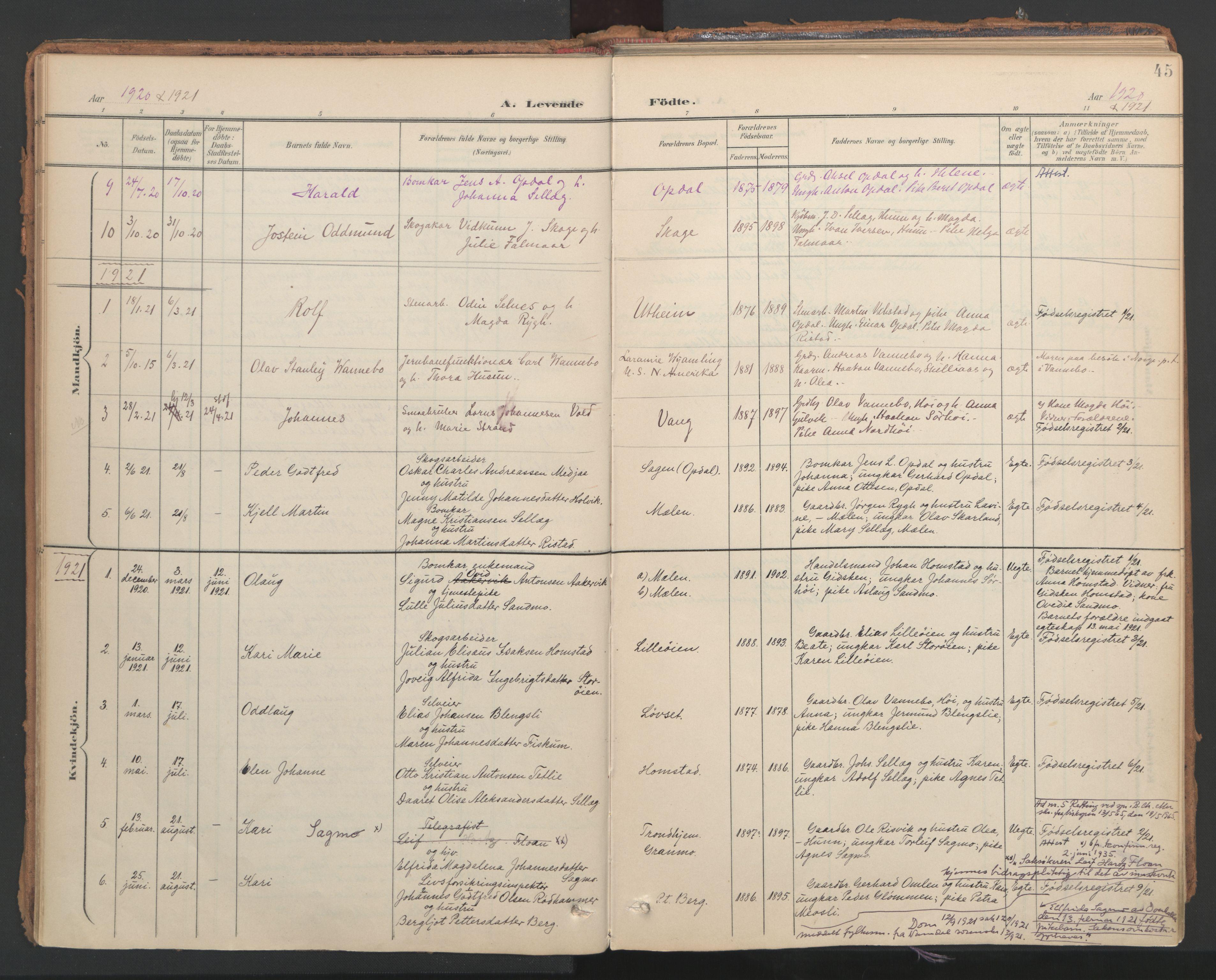 SAT, Ministerialprotokoller, klokkerbøker og fødselsregistre - Nord-Trøndelag, 766/L0564: Ministerialbok nr. 767A02, 1900-1932, s. 45