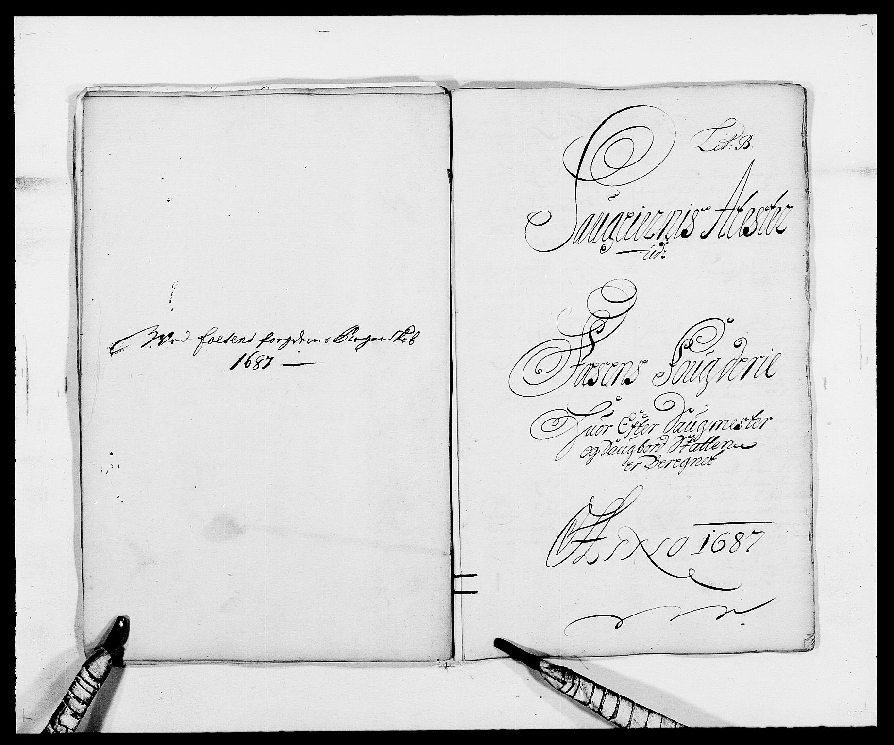 RA, Rentekammeret inntil 1814, Reviderte regnskaper, Fogderegnskap, R57/L3845: Fogderegnskap Fosen, 1687, s. 20