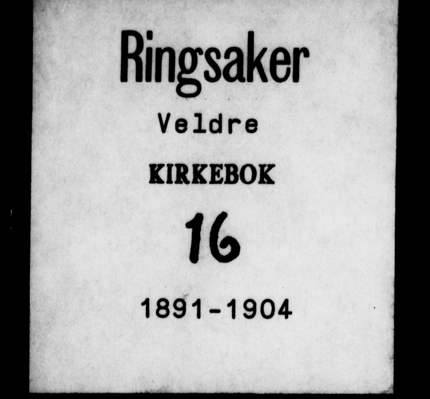 SAH, Ringsaker prestekontor, K/Ka/L0016: Ministerialbok nr. 16, 1891-1904