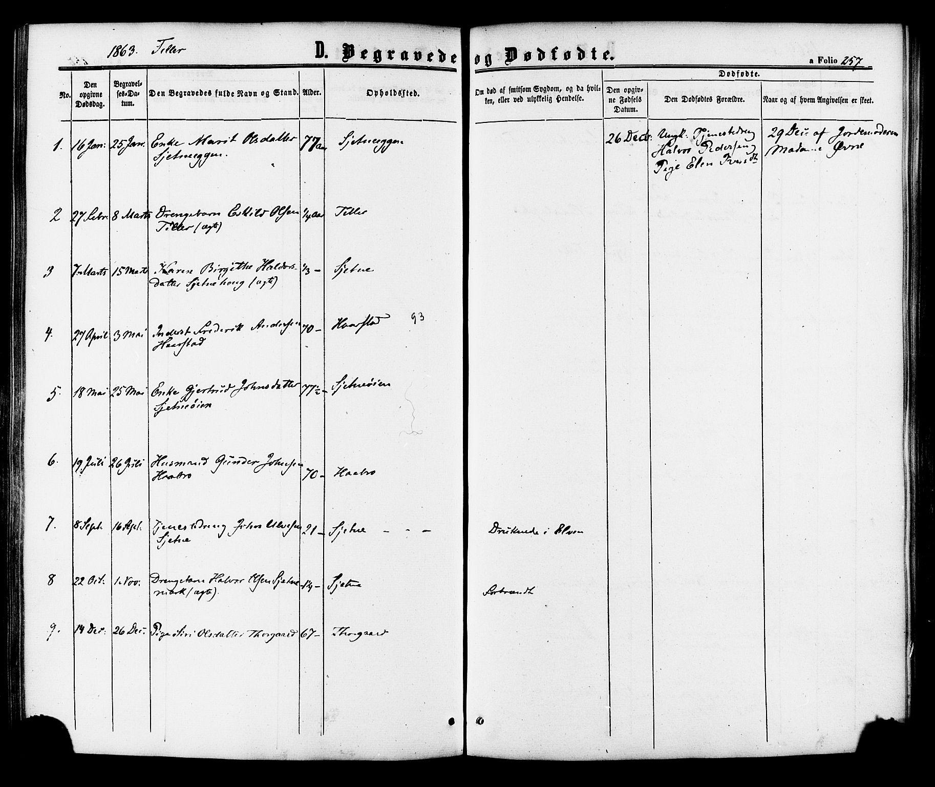 SAT, Ministerialprotokoller, klokkerbøker og fødselsregistre - Sør-Trøndelag, 618/L0443: Ministerialbok nr. 618A06 /2, 1863-1879, s. 257