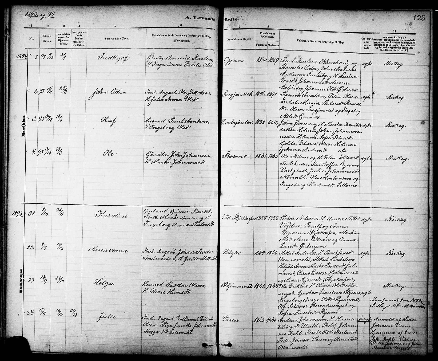 SAT, Ministerialprotokoller, klokkerbøker og fødselsregistre - Nord-Trøndelag, 724/L0267: Klokkerbok nr. 724C03, 1879-1898, s. 125