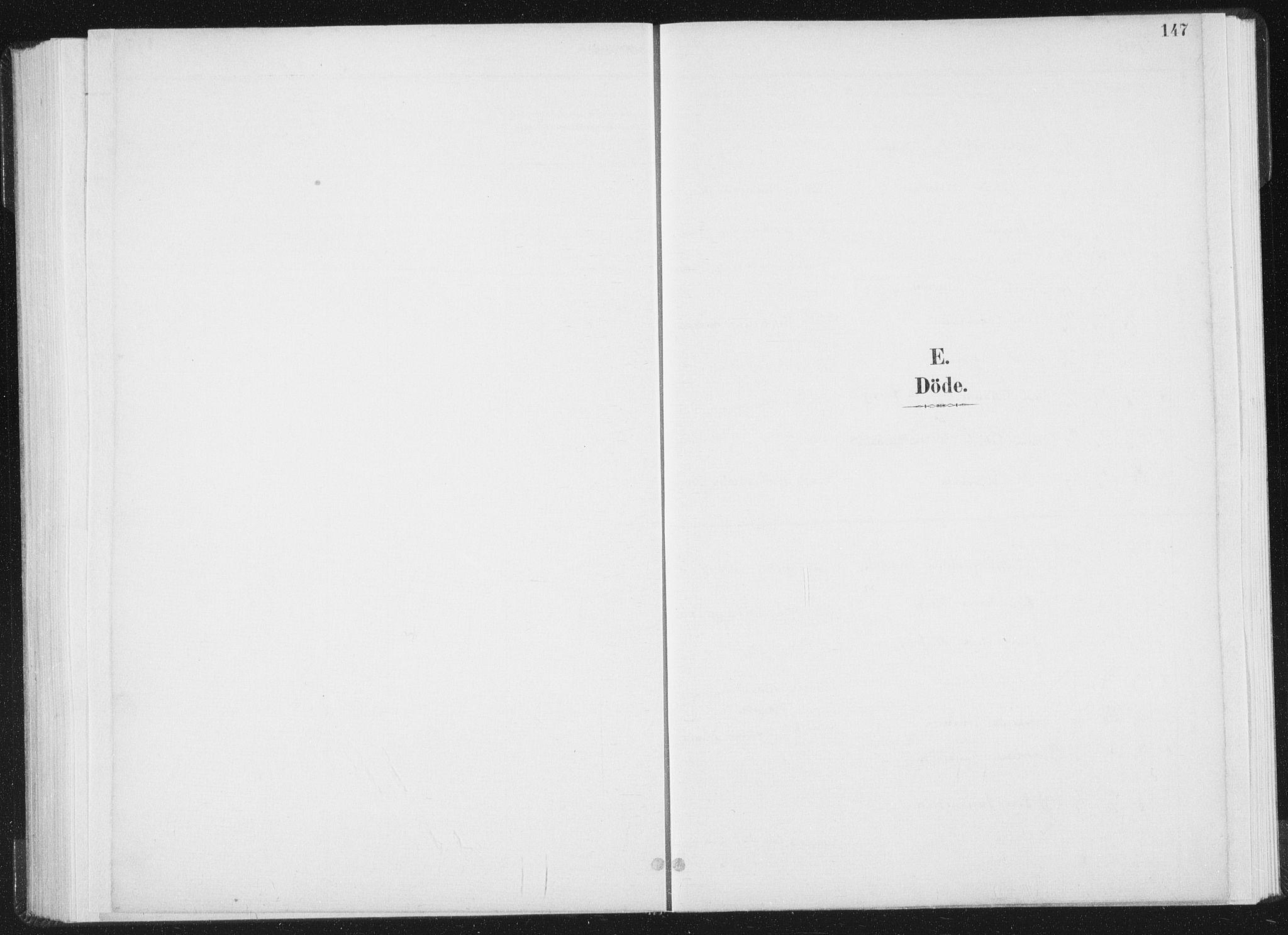 SAT, Ministerialprotokoller, klokkerbøker og fødselsregistre - Nord-Trøndelag, 771/L0597: Ministerialbok nr. 771A04, 1885-1910, s. 147