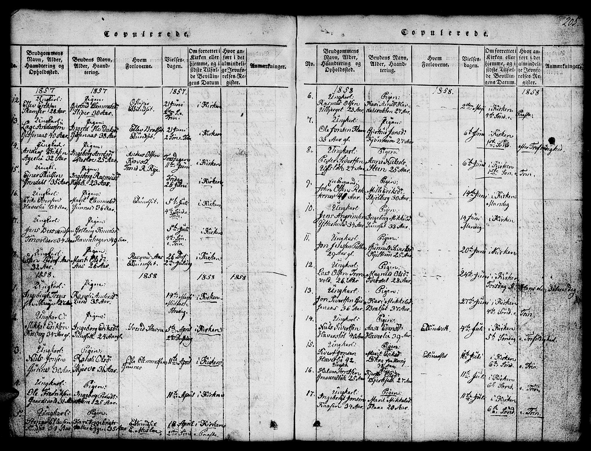 SAT, Ministerialprotokoller, klokkerbøker og fødselsregistre - Sør-Trøndelag, 674/L0874: Klokkerbok nr. 674C01, 1816-1860, s. 205