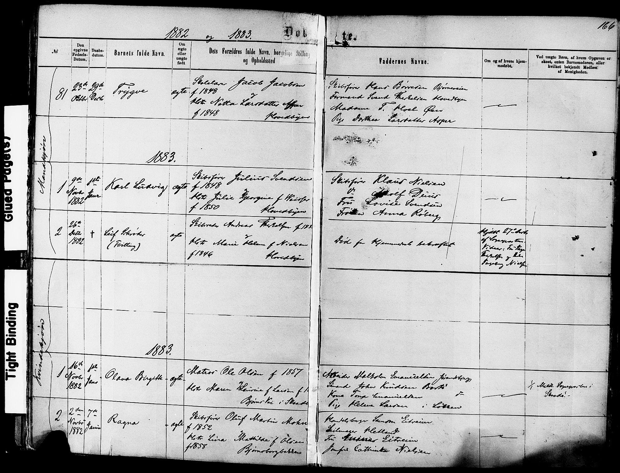 SAKO, Kragerø kirkebøker, F/Fa/L0011: Ministerialbok nr. 11, 1875-1886, s. 166