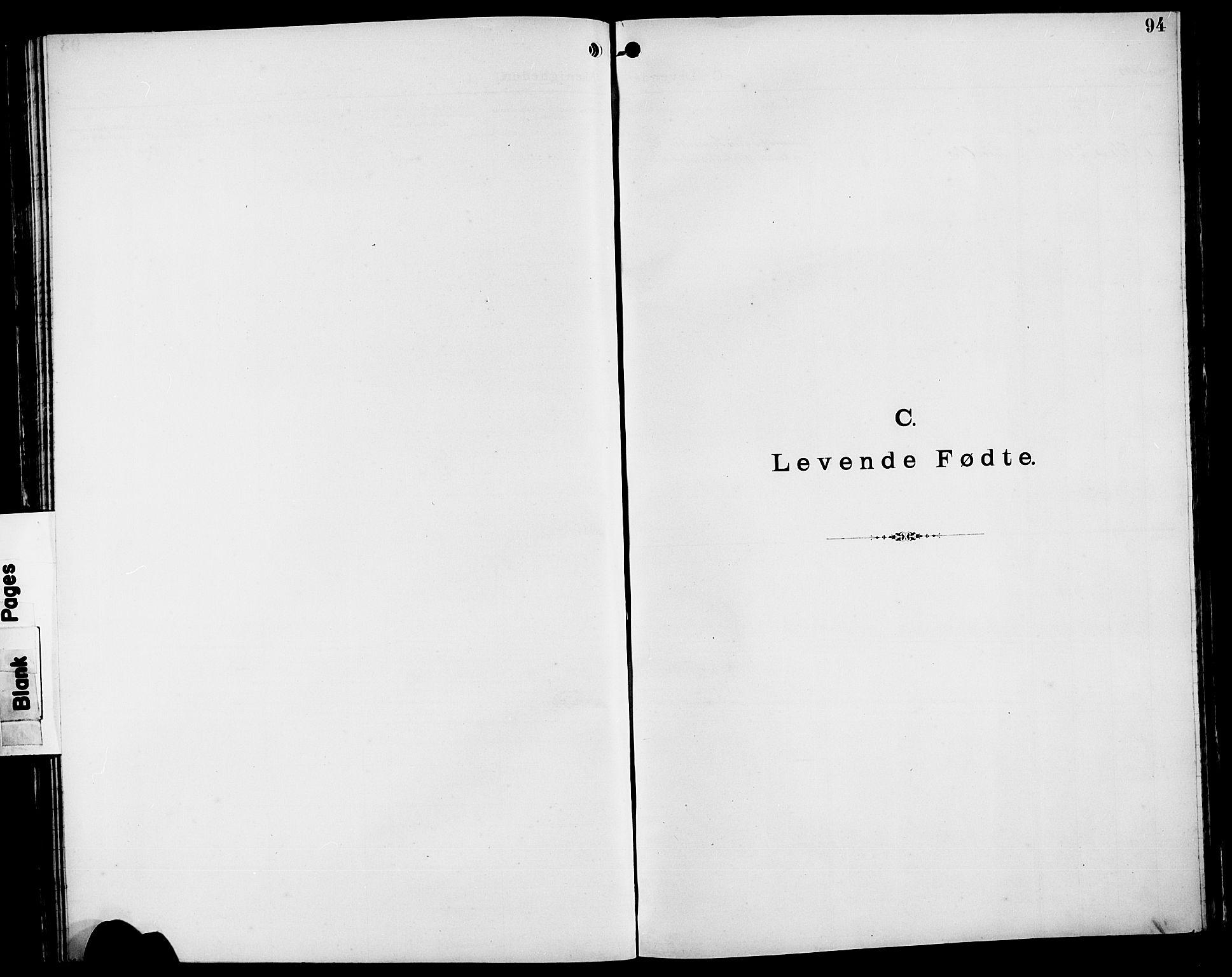 SAST, Pa 0160 - Vennenes Samfunn, Stavanger, F/Fb/L0001: Dissenterprotokoll nr. 1, 1860-1897, s. 94