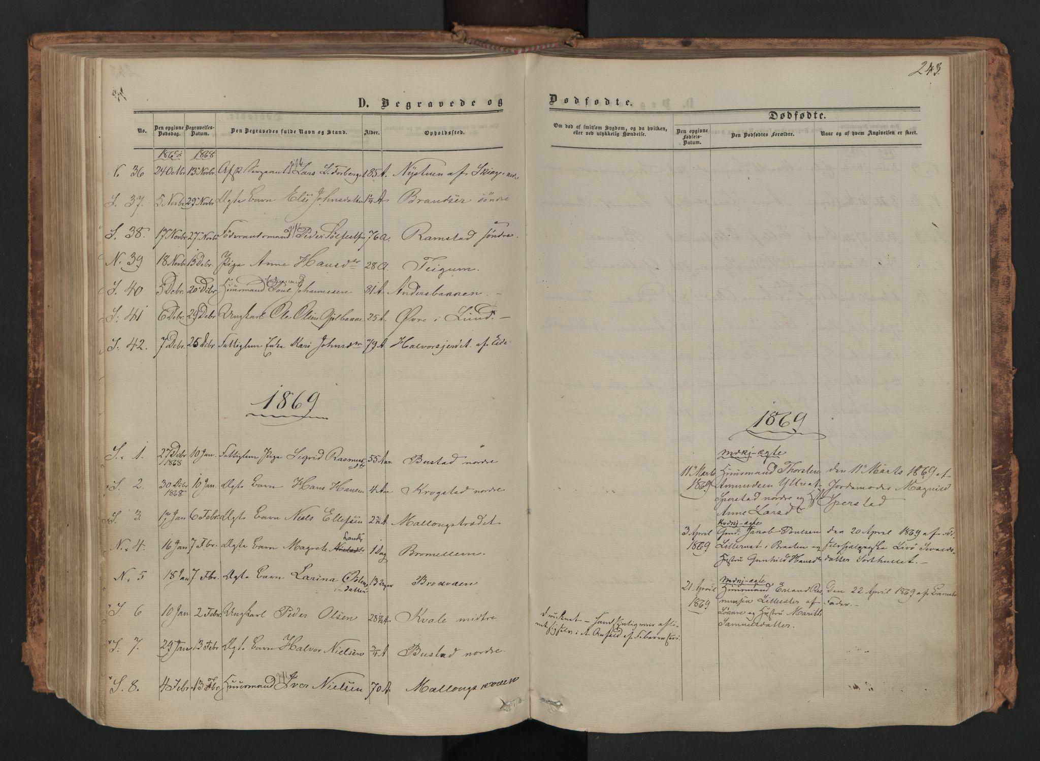SAH, Skjåk prestekontor, Ministerialbok nr. 1, 1863-1879, s. 243