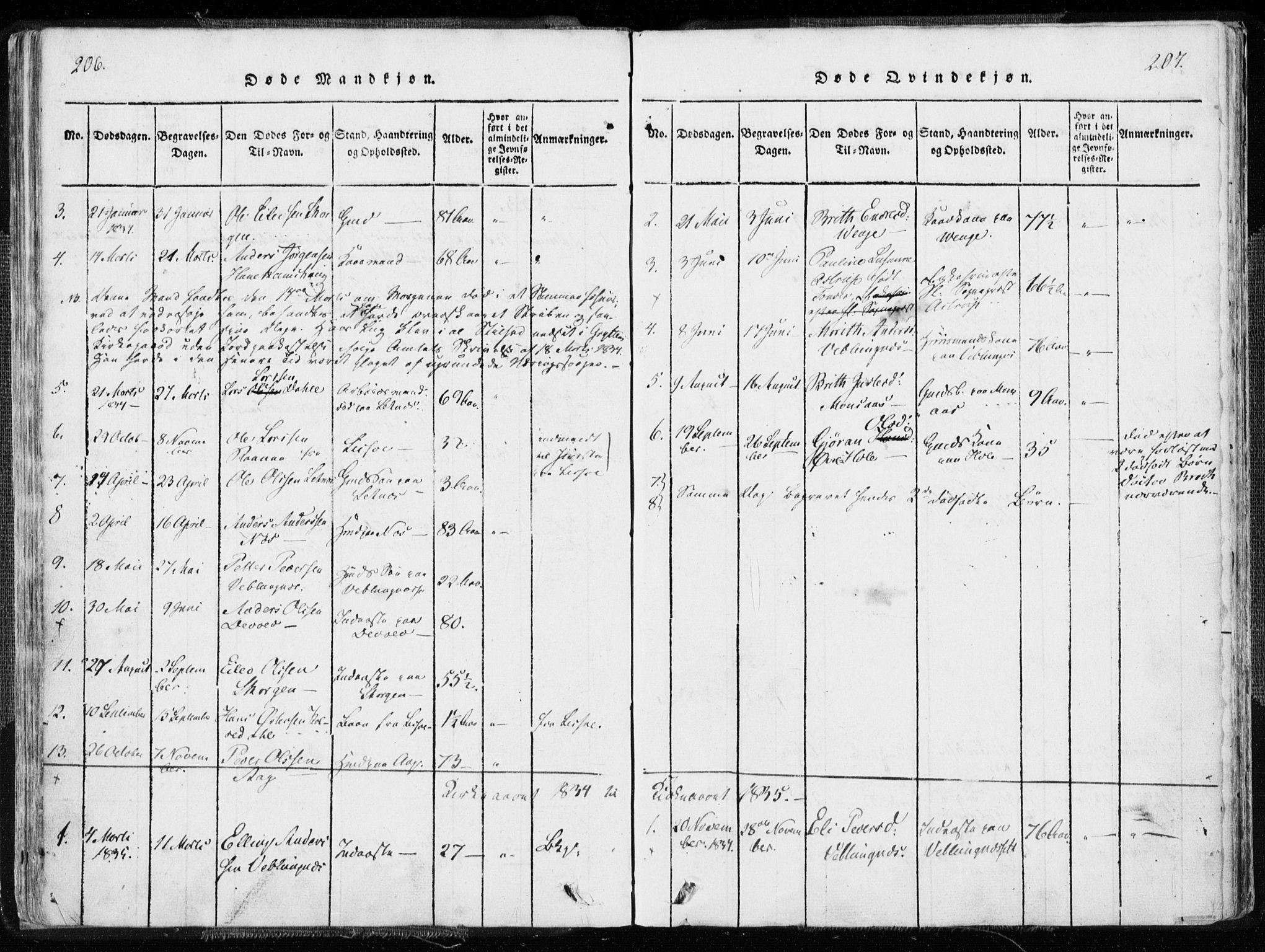 SAT, Ministerialprotokoller, klokkerbøker og fødselsregistre - Møre og Romsdal, 544/L0571: Ministerialbok nr. 544A04, 1818-1853, s. 206-207