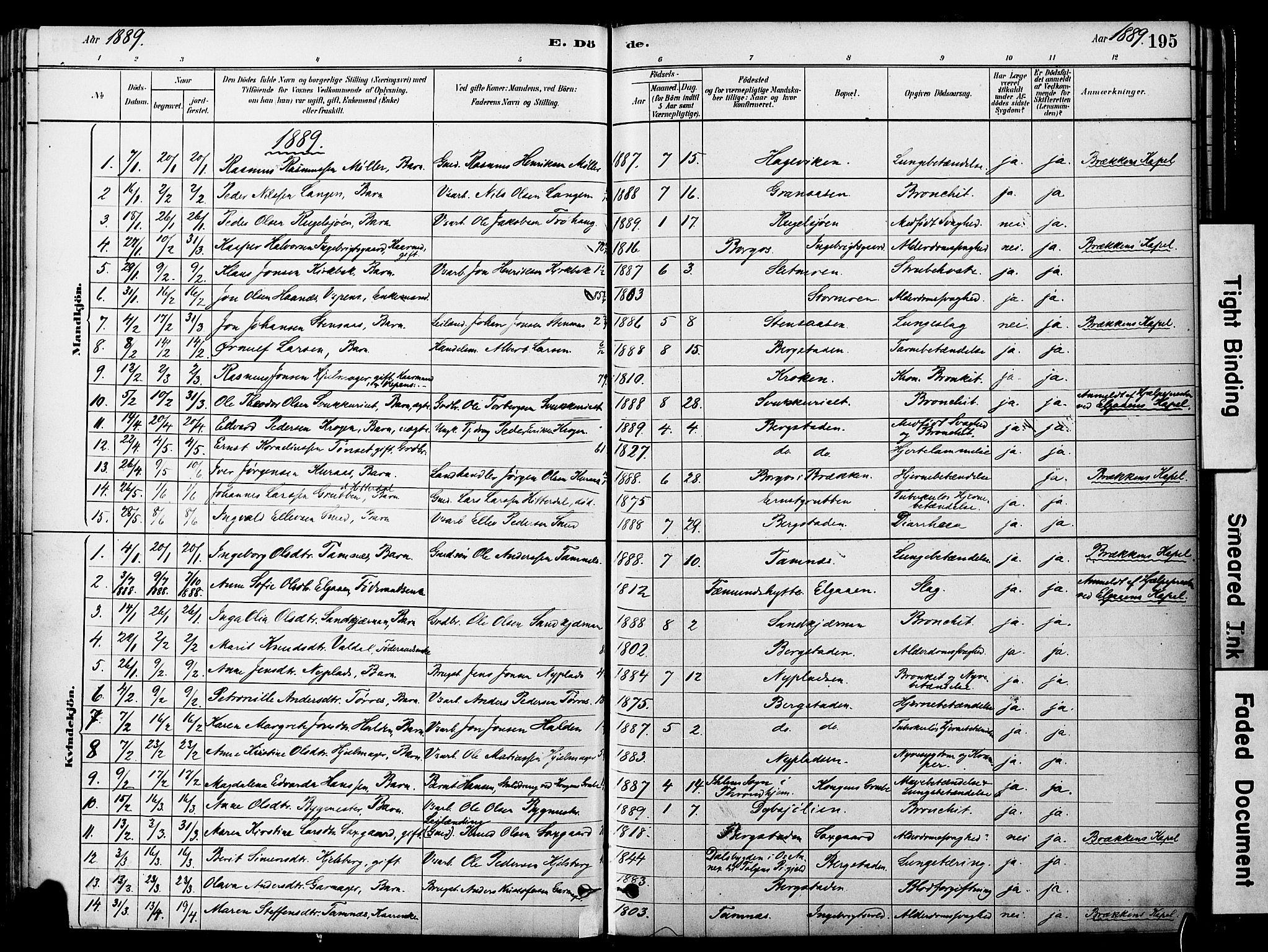 SAT, Ministerialprotokoller, klokkerbøker og fødselsregistre - Sør-Trøndelag, 681/L0933: Ministerialbok nr. 681A11, 1879-1890, s. 195