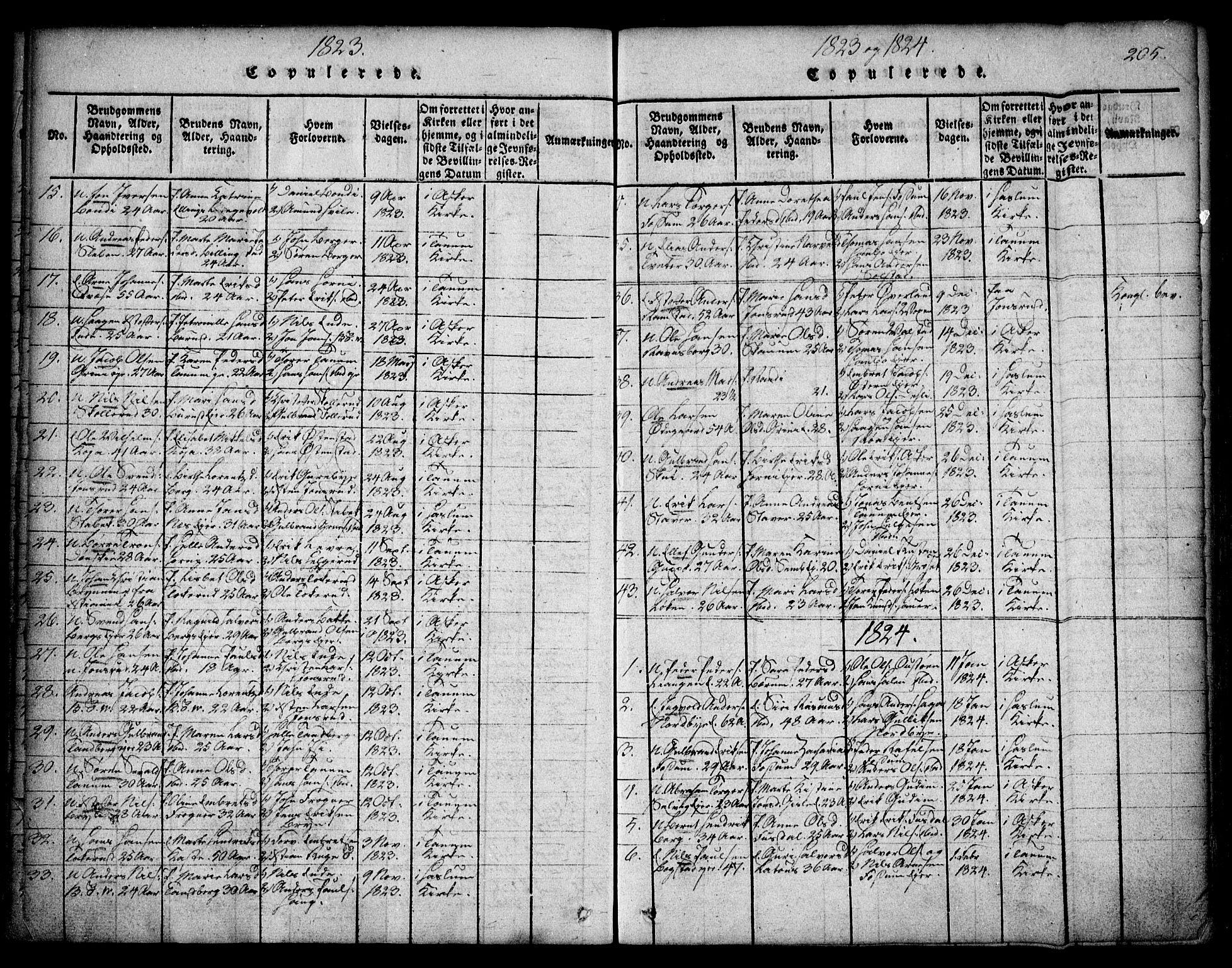 SAO, Asker prestekontor Kirkebøker, F/Fa/L0006: Ministerialbok nr. I 6, 1814-1824, s. 205