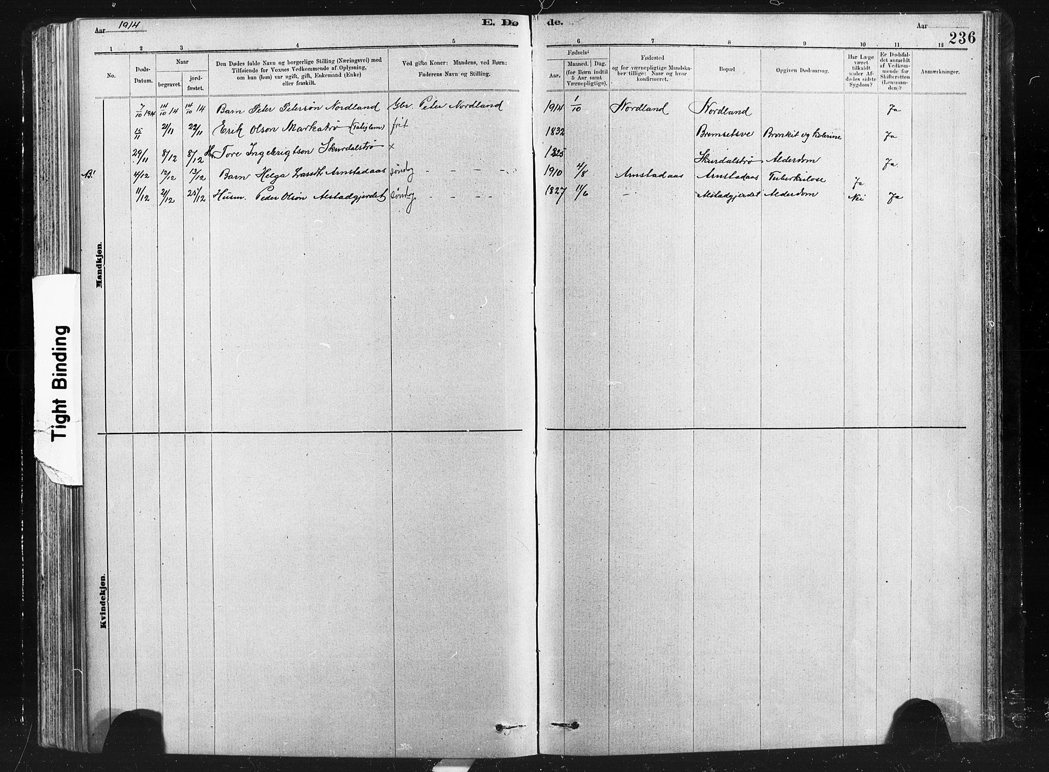 SAT, Ministerialprotokoller, klokkerbøker og fødselsregistre - Nord-Trøndelag, 712/L0103: Klokkerbok nr. 712C01, 1878-1917, s. 236