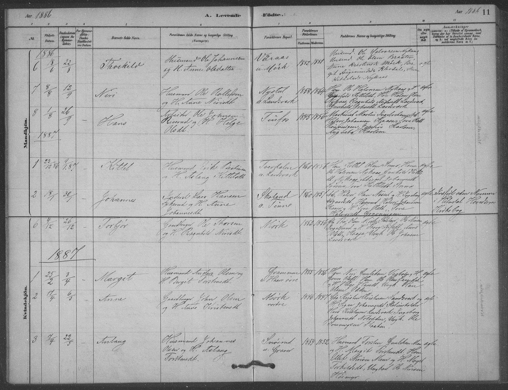 SAKO, Heddal kirkebøker, F/Fb/L0002: Ministerialbok nr. II 2, 1878-1913, s. 11