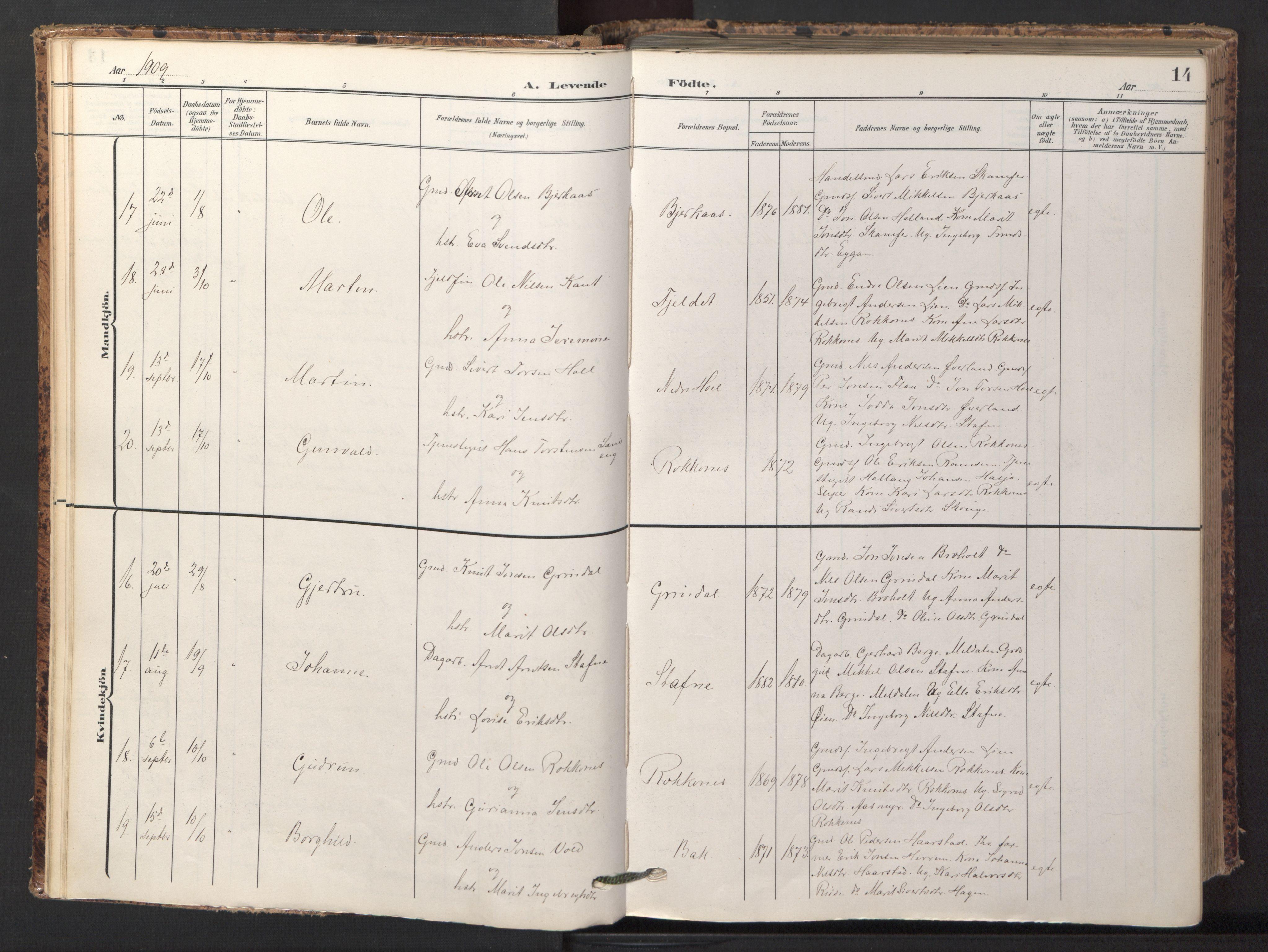 SAT, Ministerialprotokoller, klokkerbøker og fødselsregistre - Sør-Trøndelag, 674/L0873: Ministerialbok nr. 674A05, 1908-1923, s. 14