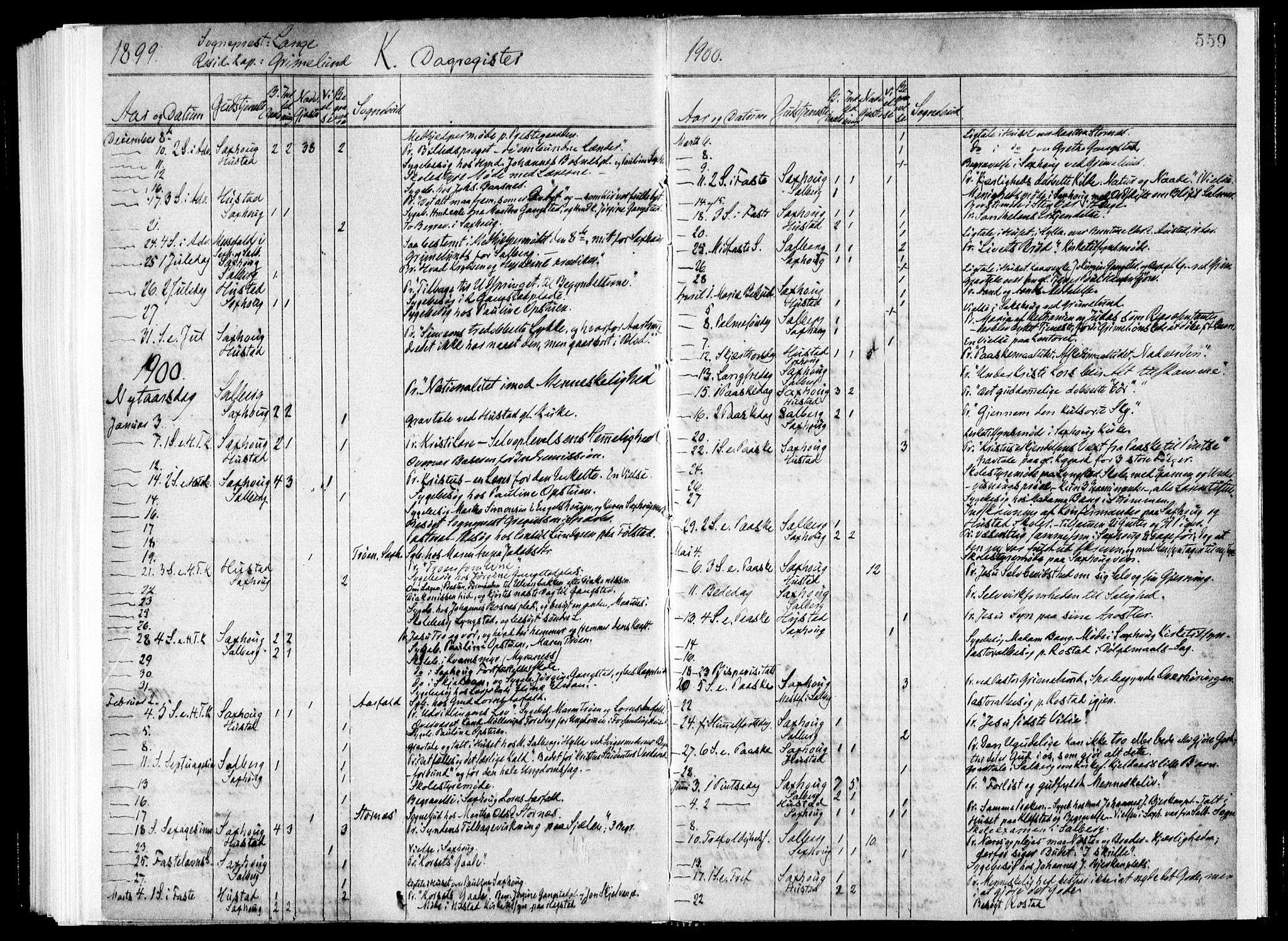 SAT, Ministerialprotokoller, klokkerbøker og fødselsregistre - Nord-Trøndelag, 730/L0285: Ministerialbok nr. 730A10, 1879-1914, s. 559