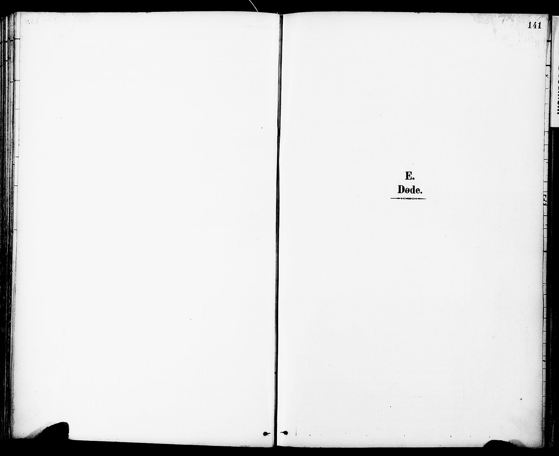 SAT, Ministerialprotokoller, klokkerbøker og fødselsregistre - Sør-Trøndelag, 681/L0935: Ministerialbok nr. 681A13, 1890-1898, s. 141