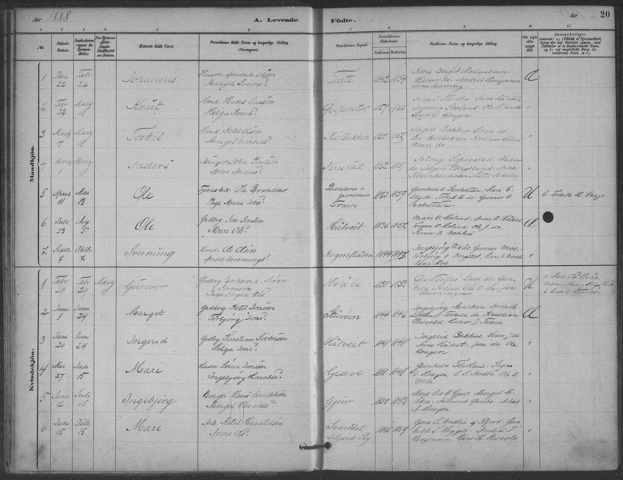 SAKO, Hjartdal kirkebøker, F/Fa/L0010: Ministerialbok nr. I 10, 1880-1929, s. 20