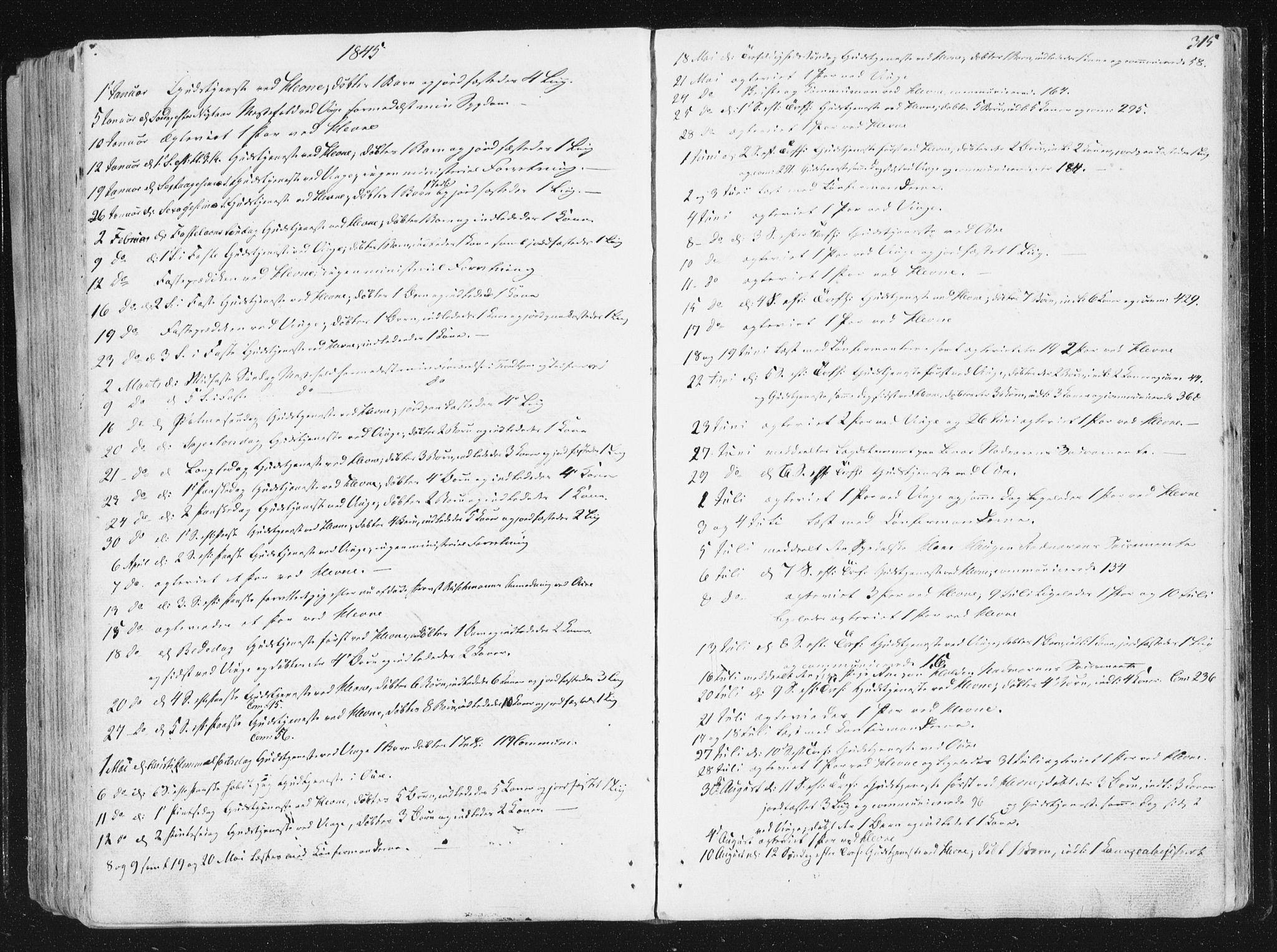 SAT, Ministerialprotokoller, klokkerbøker og fødselsregistre - Sør-Trøndelag, 630/L0493: Ministerialbok nr. 630A06, 1841-1851, s. 315