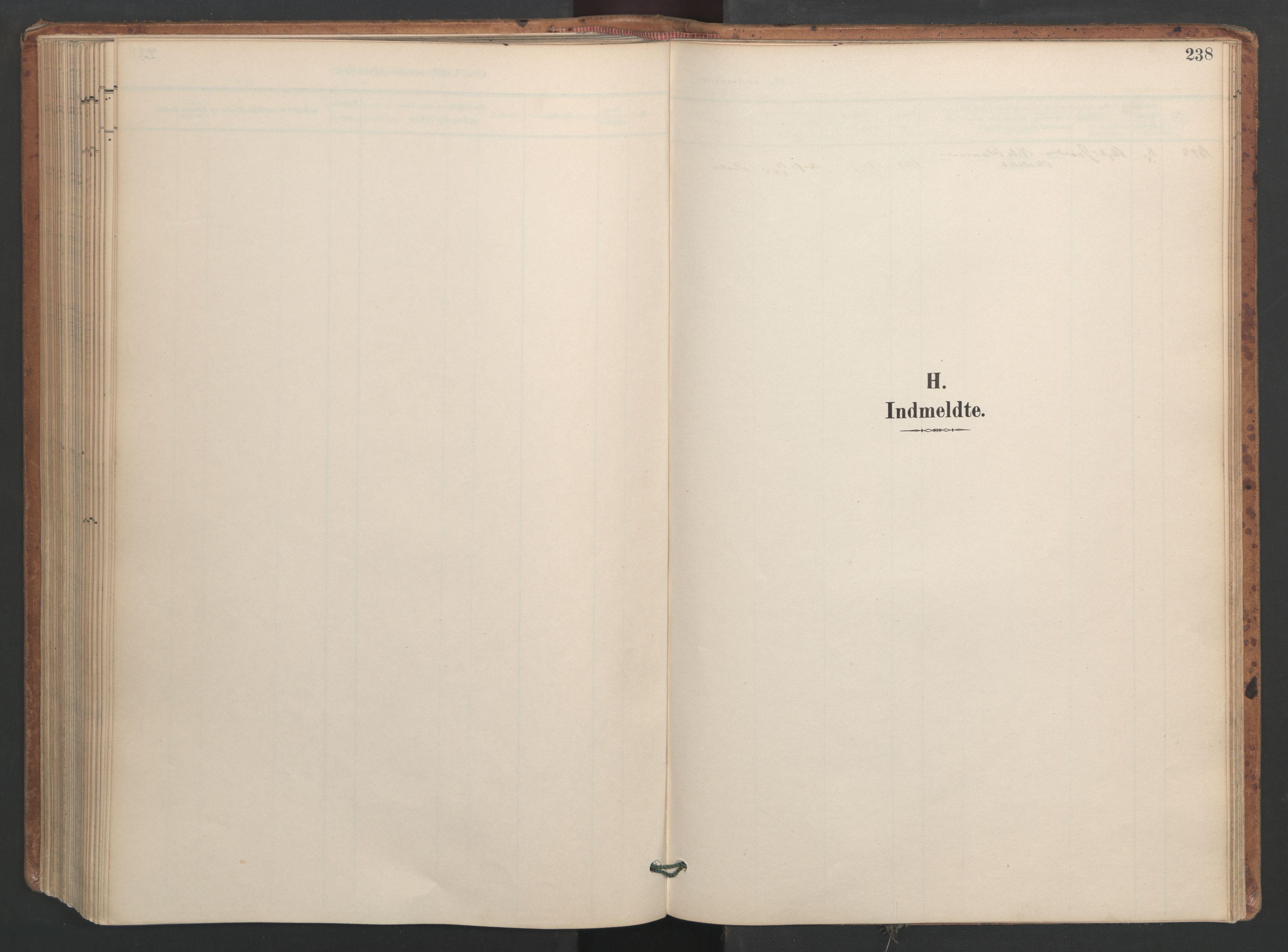 SAT, Ministerialprotokoller, klokkerbøker og fødselsregistre - Sør-Trøndelag, 655/L0681: Ministerialbok nr. 655A10, 1895-1907, s. 238