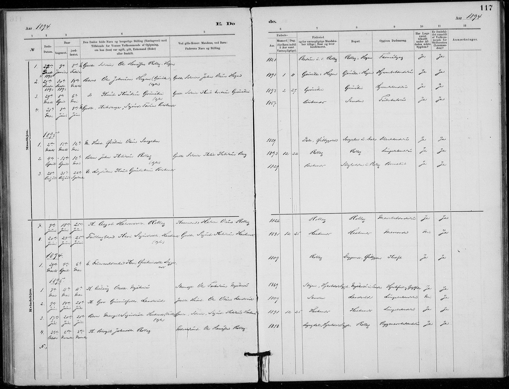 SAKO, Tinn kirkebøker, F/Fb/L0002: Ministerialbok nr. II 2, 1878-1917, s. 117