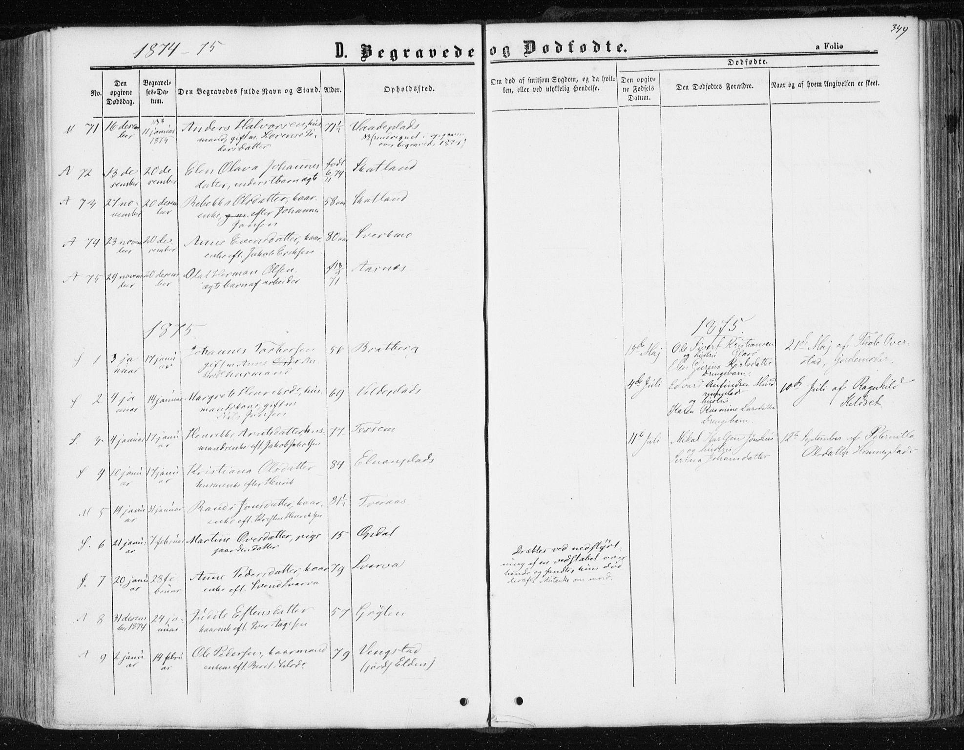 SAT, Ministerialprotokoller, klokkerbøker og fødselsregistre - Nord-Trøndelag, 741/L0394: Ministerialbok nr. 741A08, 1864-1877, s. 349