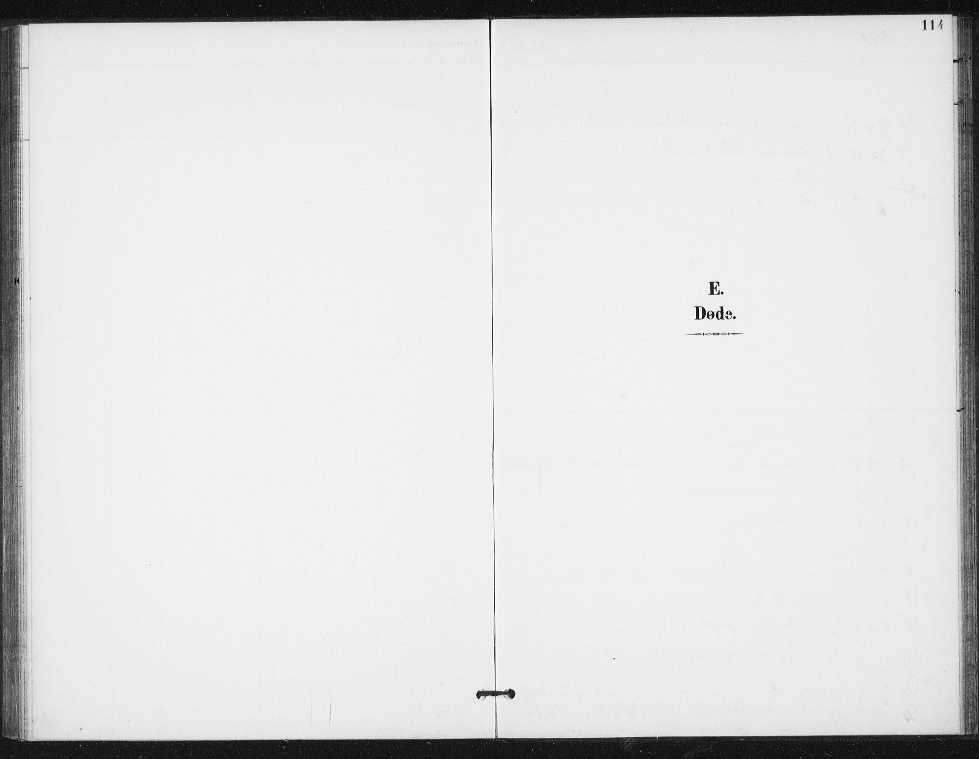 SAT, Ministerialprotokoller, klokkerbøker og fødselsregistre - Sør-Trøndelag, 654/L0664: Ministerialbok nr. 654A02, 1895-1907, s. 114