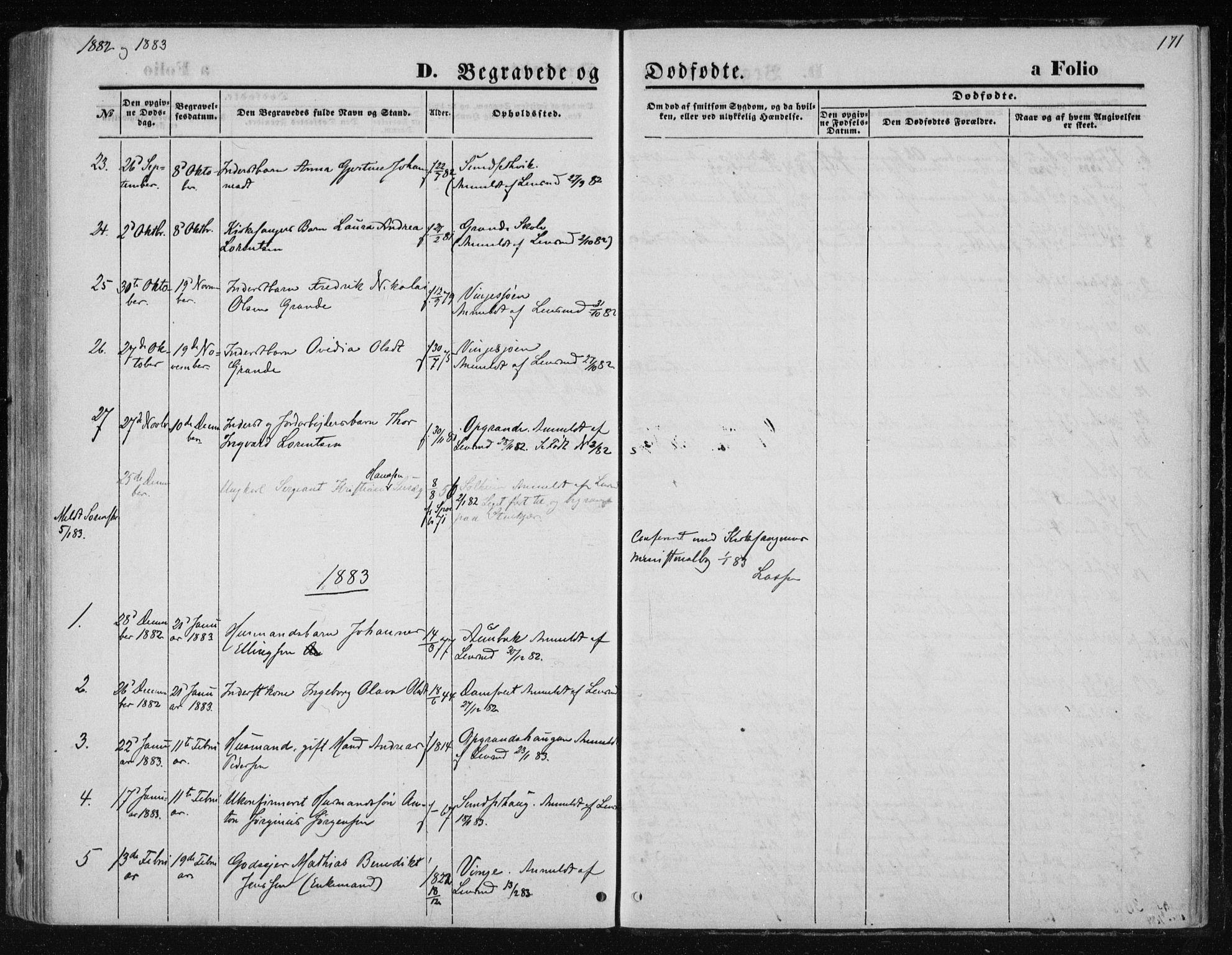 SAT, Ministerialprotokoller, klokkerbøker og fødselsregistre - Nord-Trøndelag, 733/L0324: Ministerialbok nr. 733A03, 1870-1883, s. 171