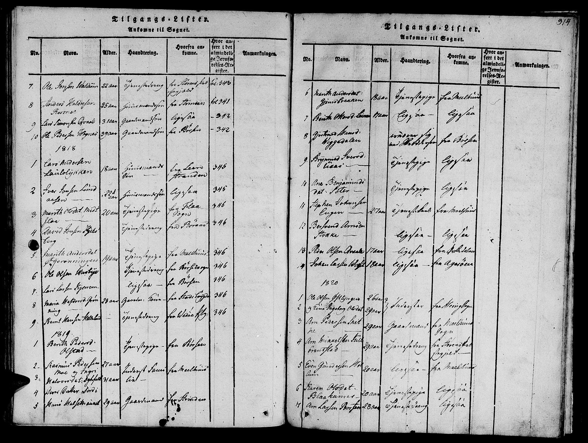 SAT, Ministerialprotokoller, klokkerbøker og fødselsregistre - Sør-Trøndelag, 612/L0372: Ministerialbok nr. 612A06 /1, 1816-1828, s. 314