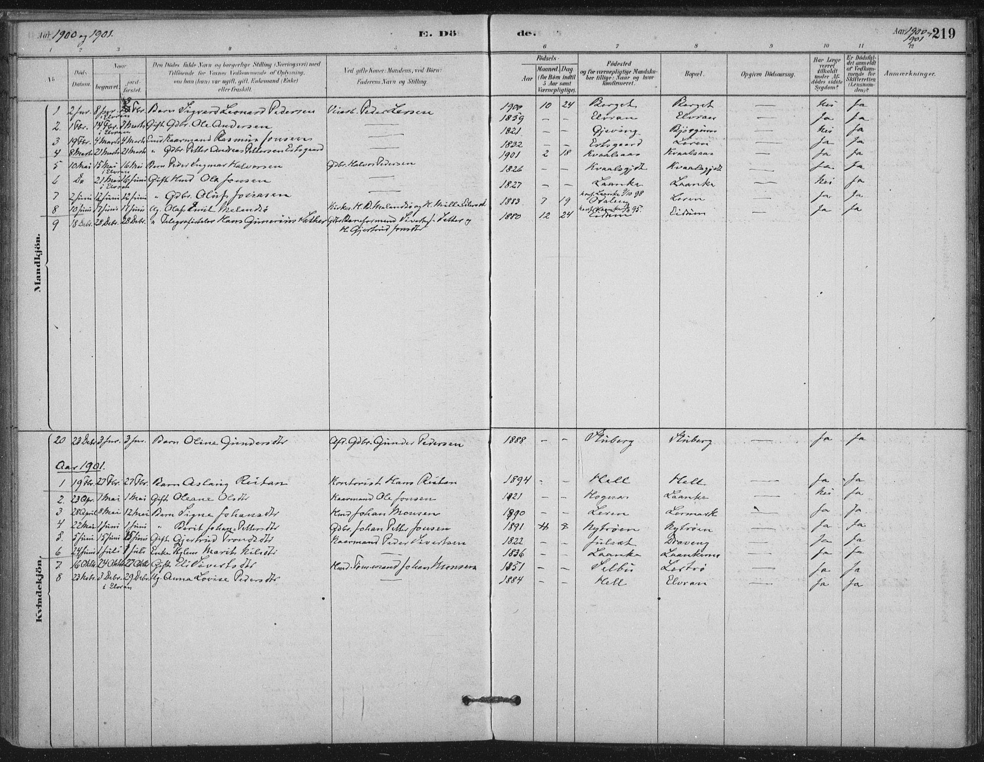 SAT, Ministerialprotokoller, klokkerbøker og fødselsregistre - Nord-Trøndelag, 710/L0095: Ministerialbok nr. 710A01, 1880-1914, s. 219