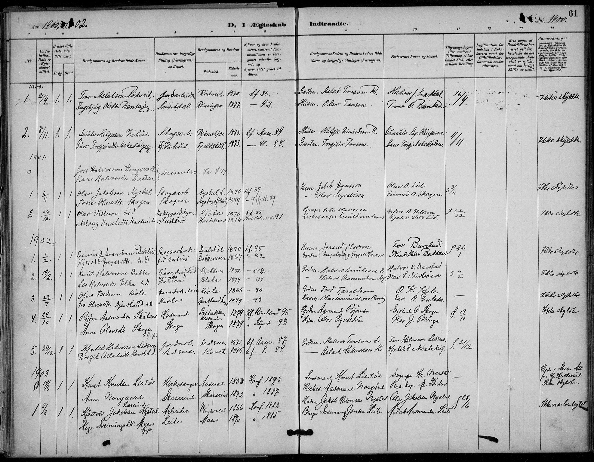 SAKO, Seljord kirkebøker, F/Fb/L0002: Ministerialbok nr. II 2, 1887-1917, s. 61