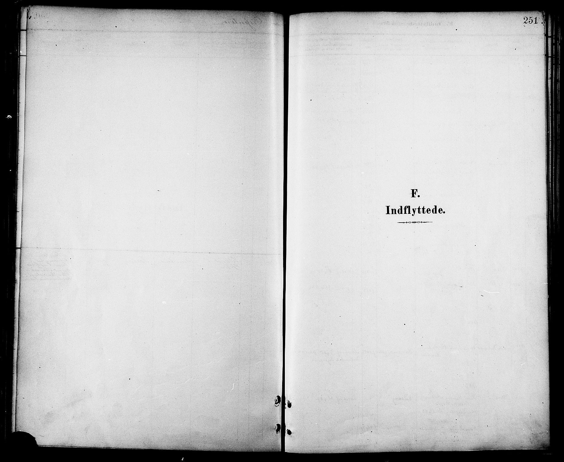SAT, Ministerialprotokoller, klokkerbøker og fødselsregistre - Nordland, 872/L1035: Ministerialbok nr. 872A10, 1884-1896, s. 251