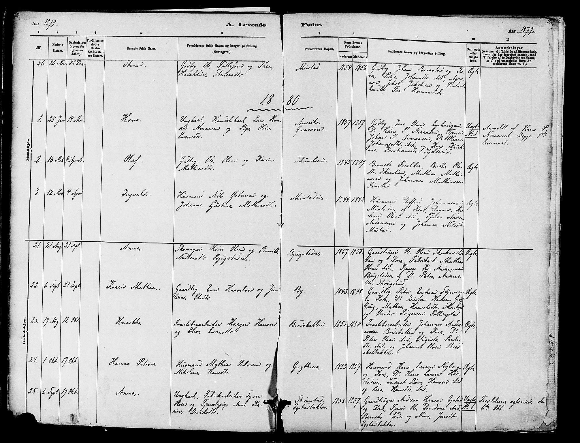 SAH, Vardal prestekontor, H/Ha/Haa/L0010: Ministerialbok nr. 10, 1878-1893, s. 10