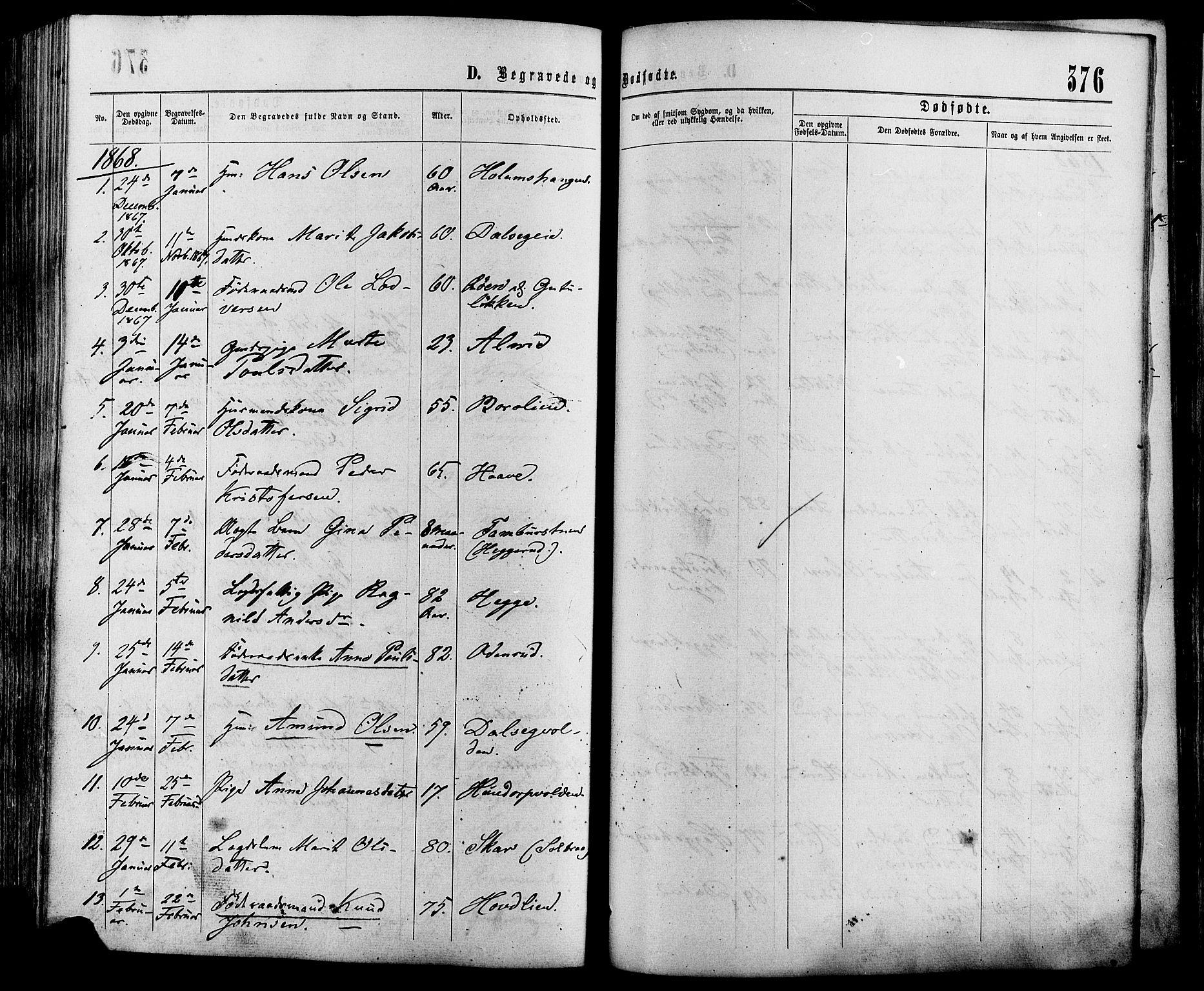 SAH, Sør-Fron prestekontor, H/Ha/Haa/L0002: Ministerialbok nr. 2, 1864-1880, s. 376