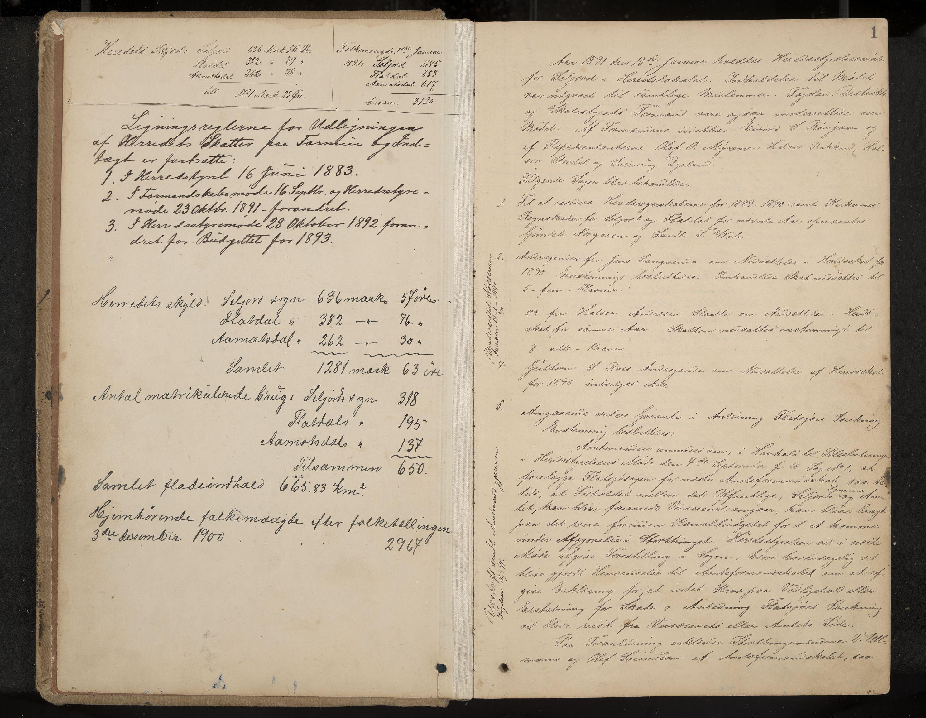 IKAK, Seljord formannskap og sentraladministrasjon, A/Aa/L0003: Møtebok med register, 1891-1905, s. 1