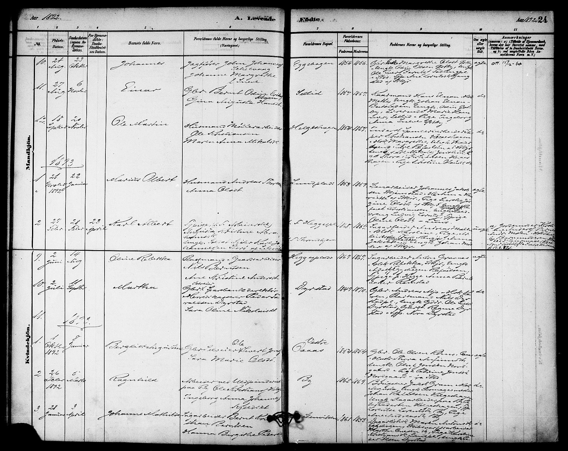 SAT, Ministerialprotokoller, klokkerbøker og fødselsregistre - Nord-Trøndelag, 740/L0378: Ministerialbok nr. 740A01, 1881-1895, s. 24