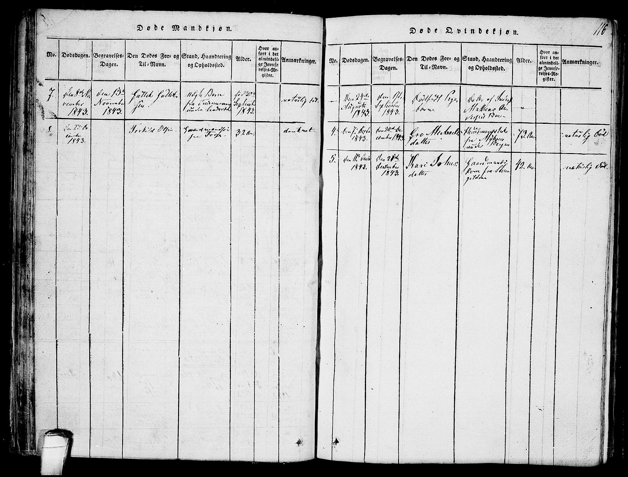 SAKO, Hjartdal kirkebøker, F/Fb/L0001: Ministerialbok nr. II 1, 1815-1843, s. 116