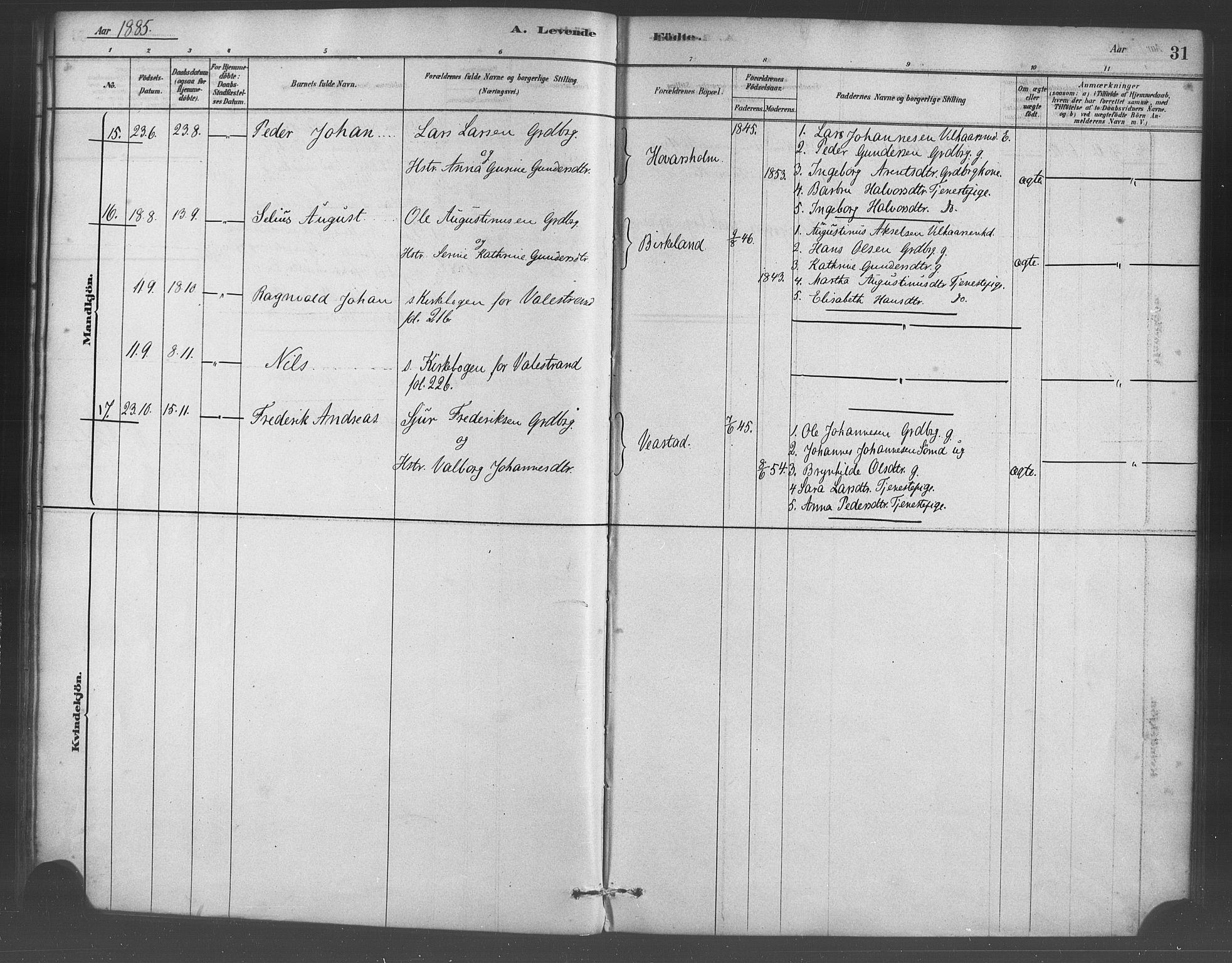 SAB, Sveio Sokneprestembete, H/Haa: Ministerialbok nr. D 1, 1878-1894, s. 31