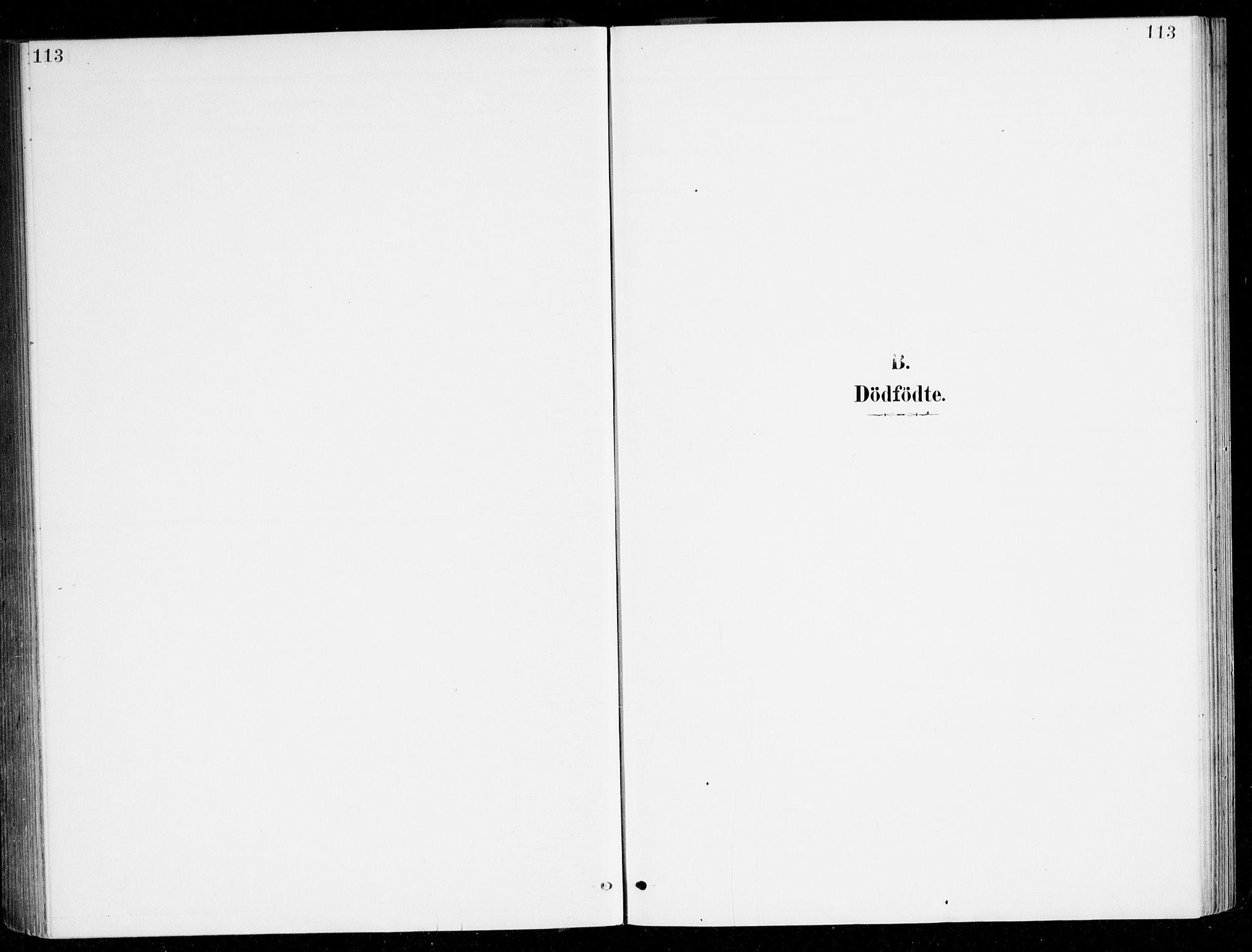 SAB, Haus sokneprestembete, H/Haa: Ministerialbok nr. D 1, 1887-1898, s. 113